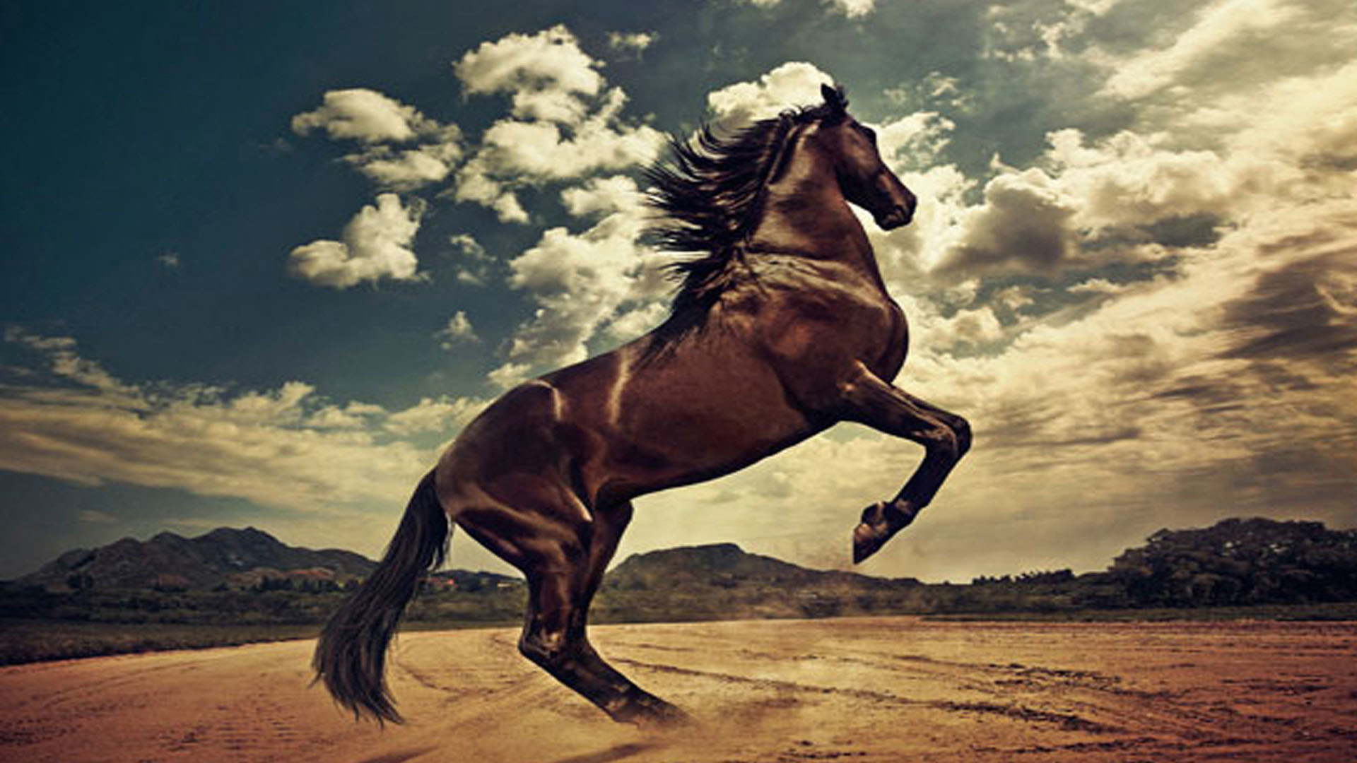 Res: 1920x1080, western horse wallpaper