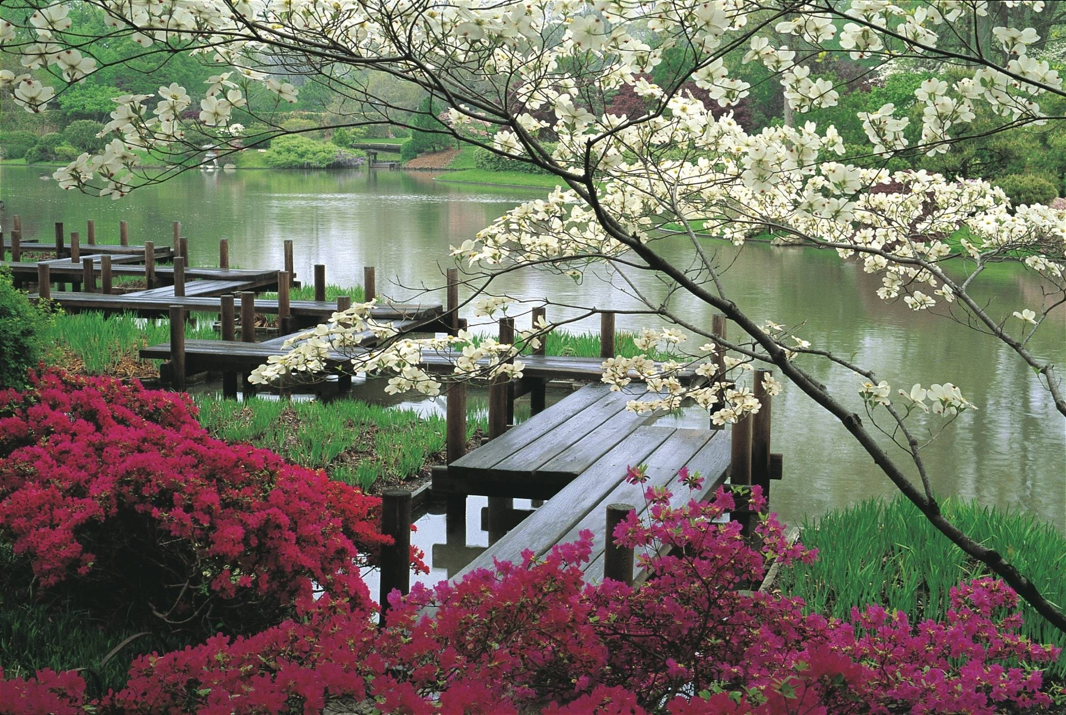 Res: 2100x1409, Japanese Gardens Wallpapers Wallpaper Cave Also Japanese Garden for Japanese  Garden Background