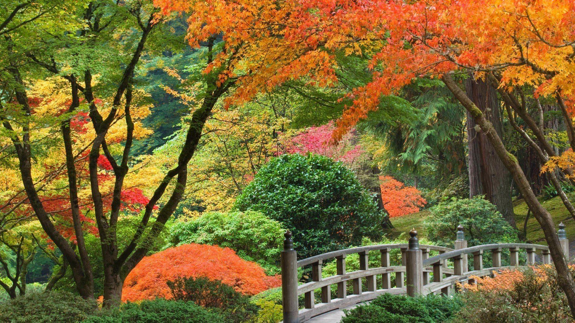 Res: 1920x1080, Wallpaper Japanese Beautiful Garden Wallpaper [19201080]