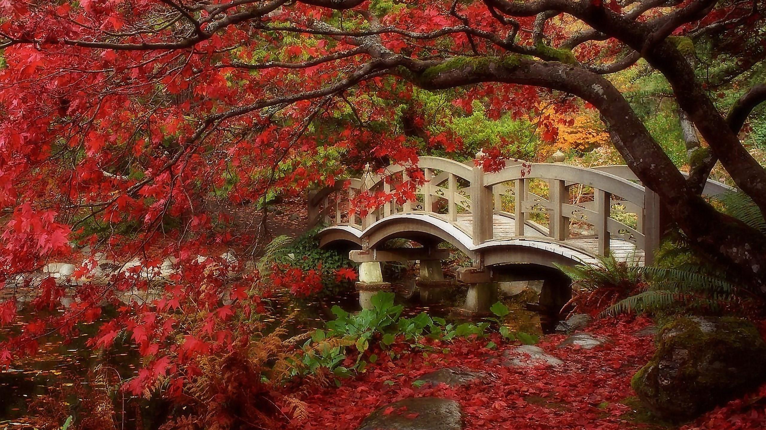 Res: 2560x1440, wallpaper desktop japanese garden
