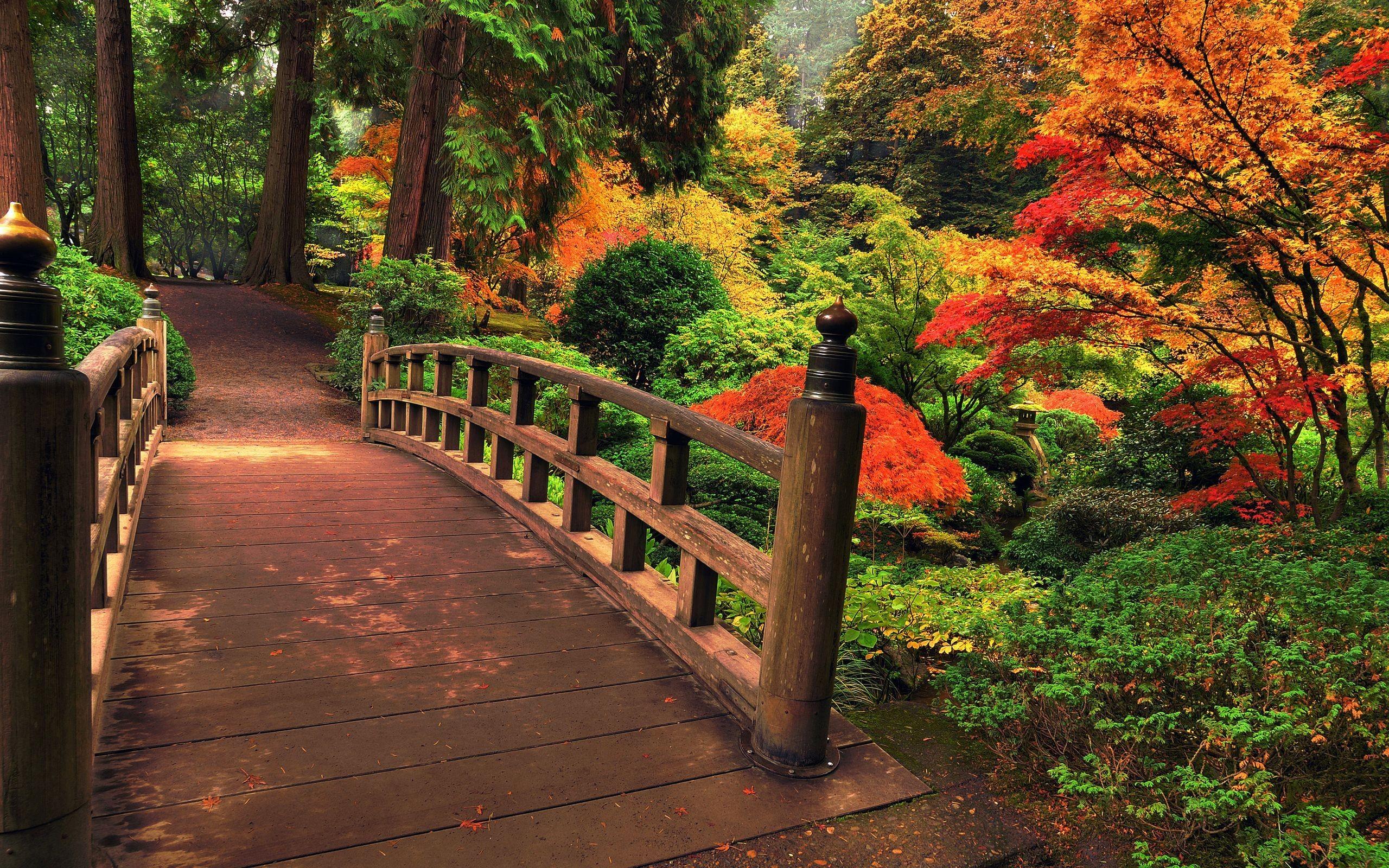 Res: 2560x1600, Gardens Wallpaper: Japanese Garden Wide Desktop Background .