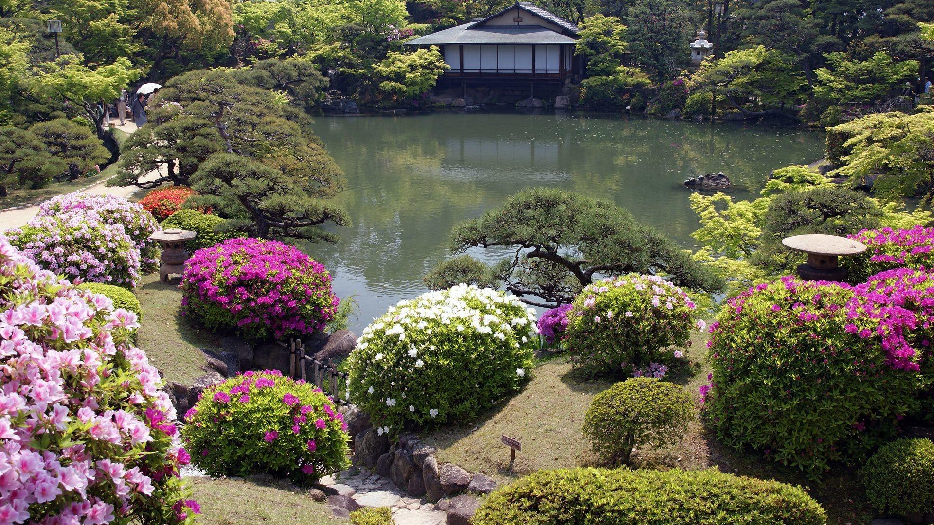 Res: 1920x1080, Japanese Garden Wallpaper, HD, flowers, a japanese garden, house