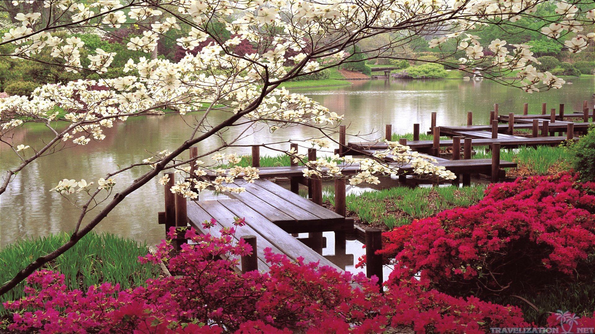 Res: 1920x1080,  Eleletsitz Spring Japanese Garden Wallpaper Images · Download ·  Religious ...