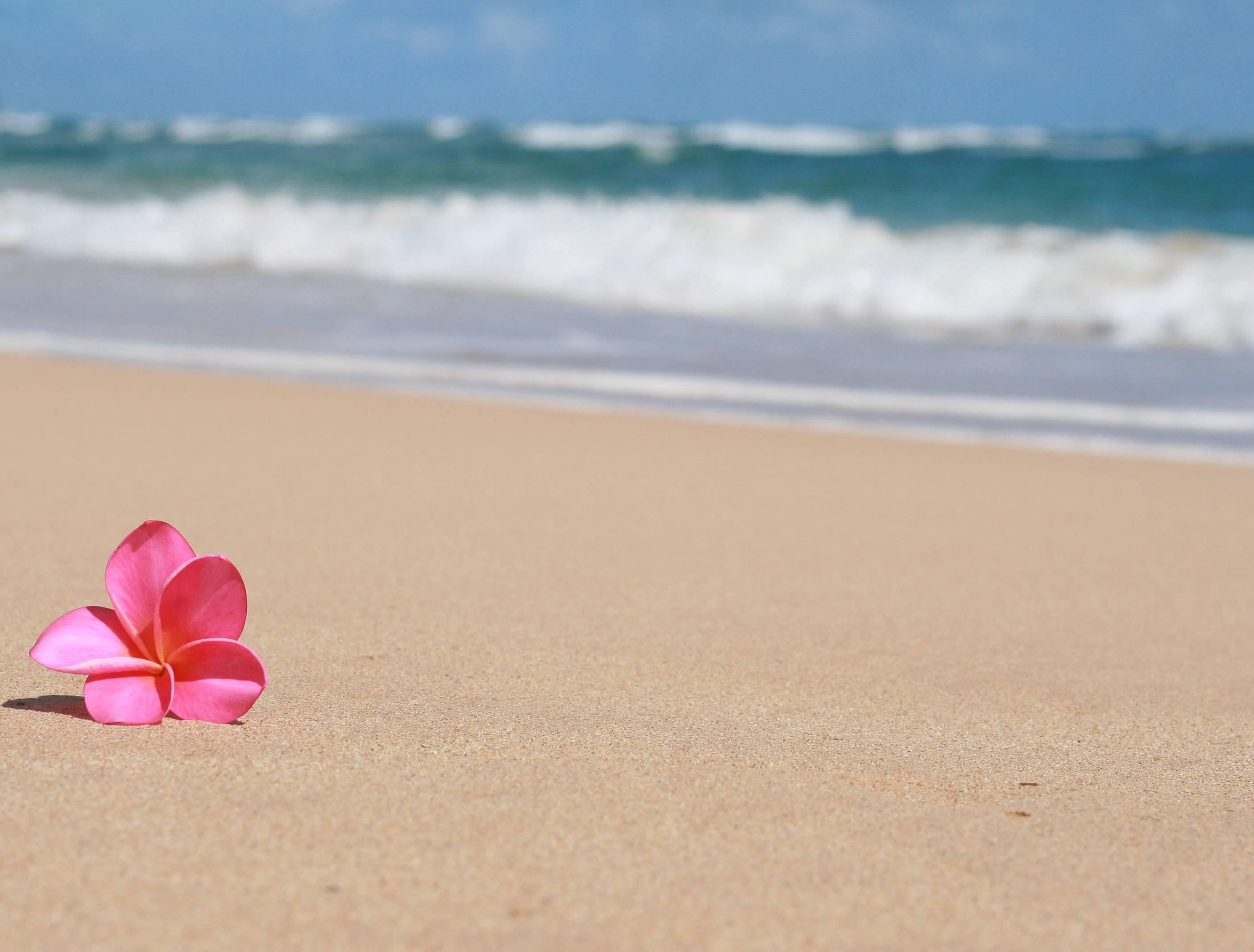 Res: 2810x2133, Top HD Sandy Beach Wallpaper | Nature HD | 287.85 KB src