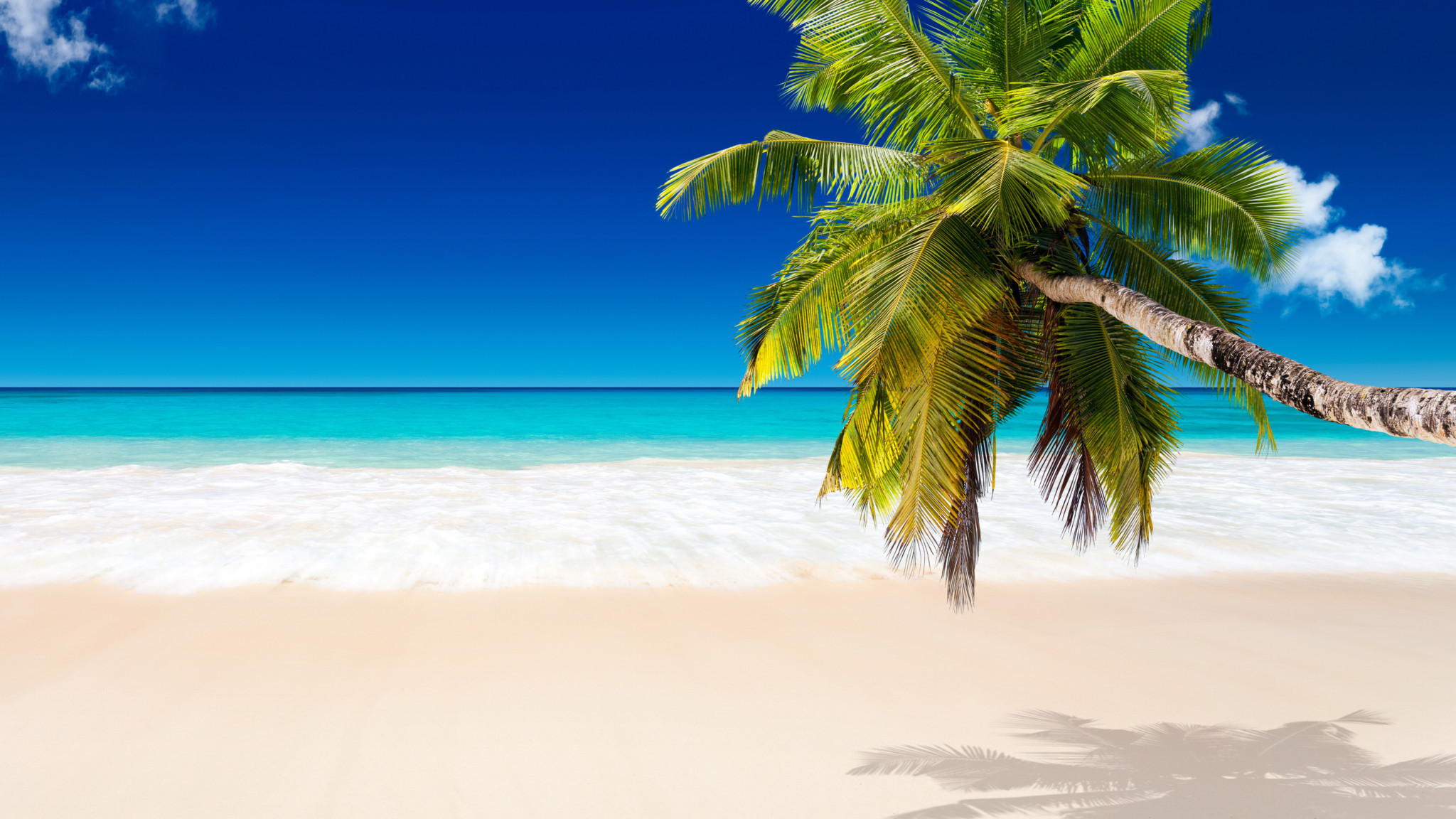 Res: 2048x1152, White-Sand-Beach-Wallpaper-with-Coconut-Tree