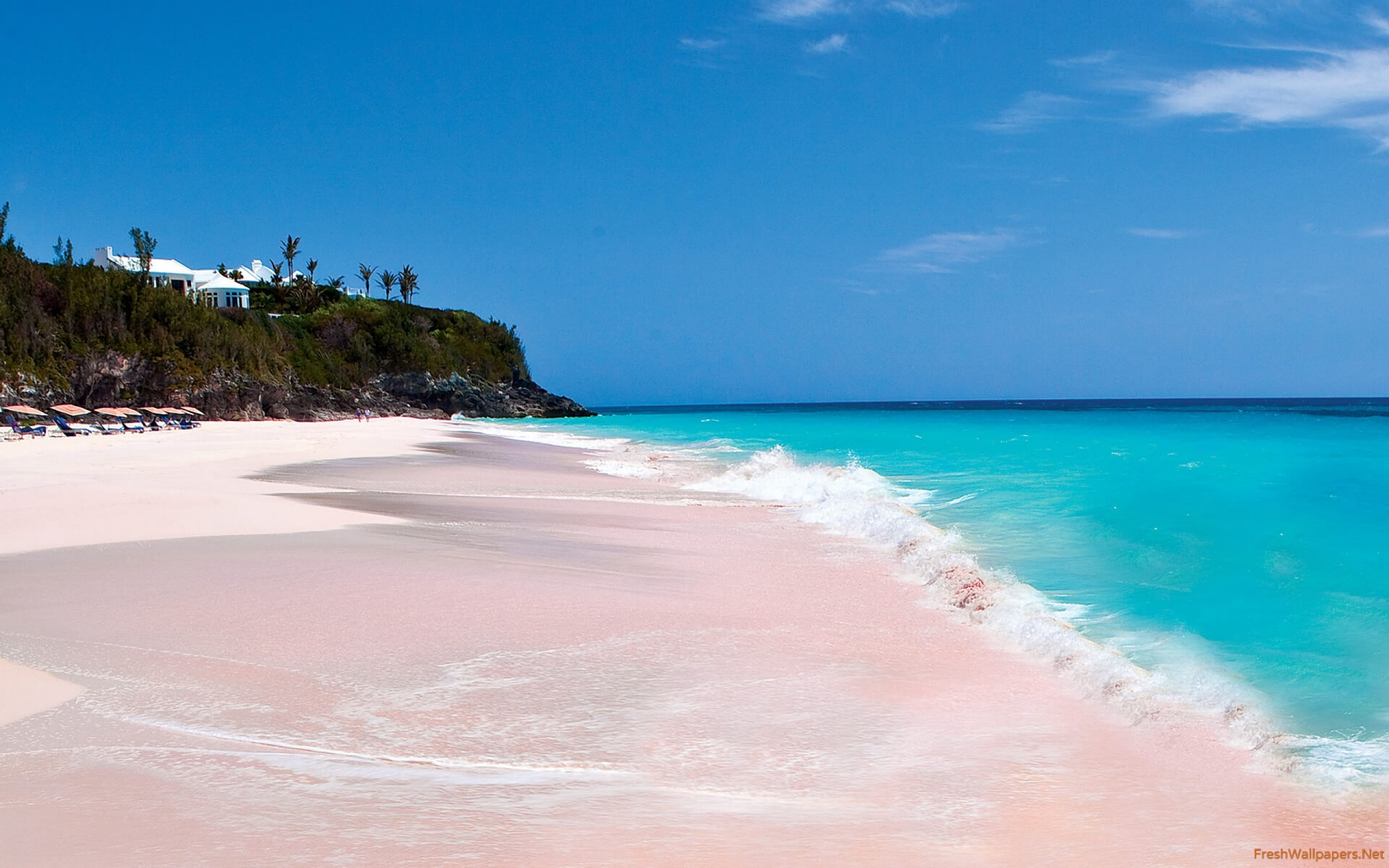 Res: 2560x1600, Pink Sands Beach Harbour Island Bahamas wallpaper