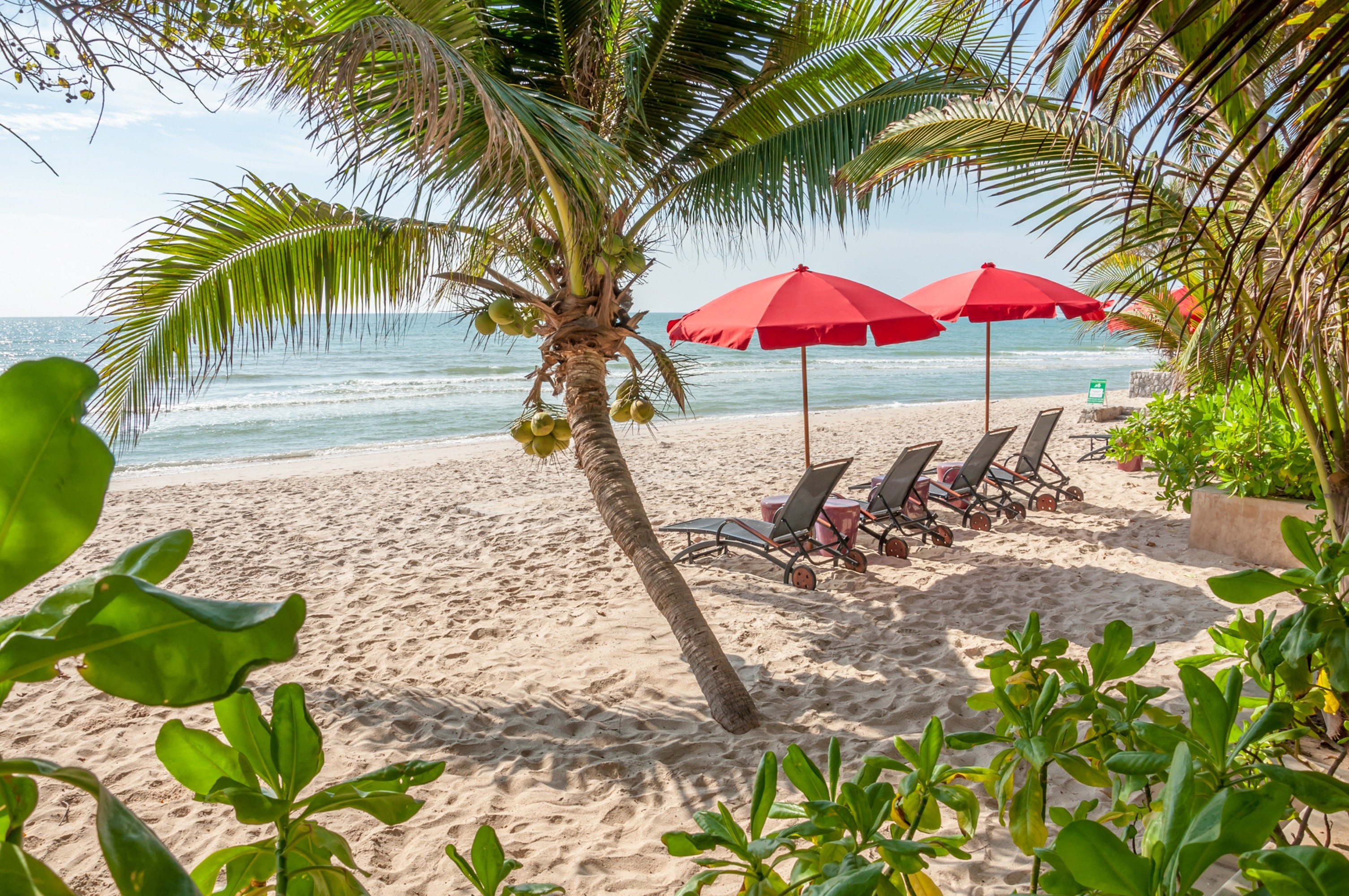 Res: 3011x2000, Wallpaper beautiful, sky, seascape, sand, sea, beach, summer, tropical,  summer, waves, sea, sand, beach, palms, shore, ...