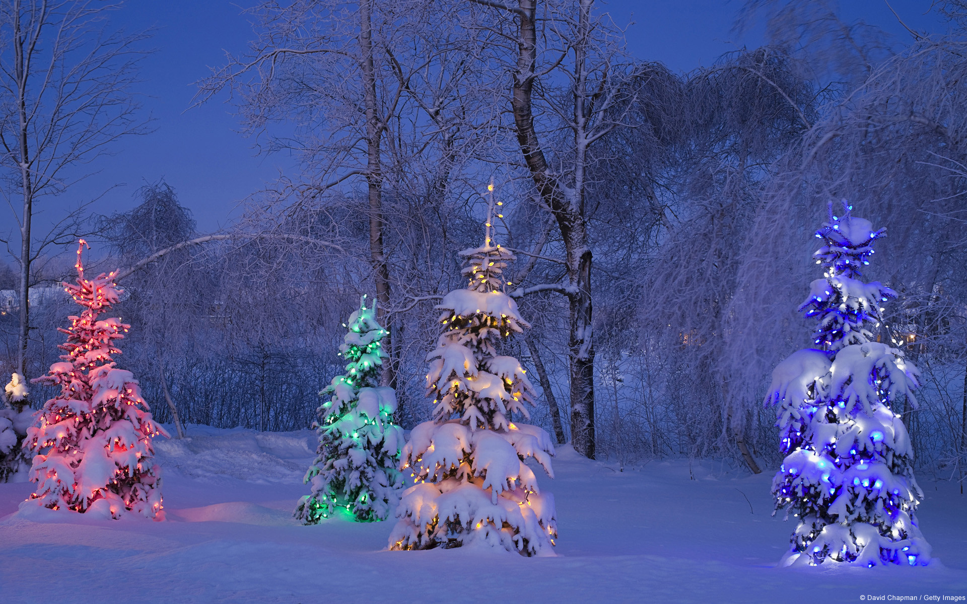 Res: 1920x1200, Holiday - Christmas Holiday Christmas Tree Light Colors Winter Snow  Wallpaper
