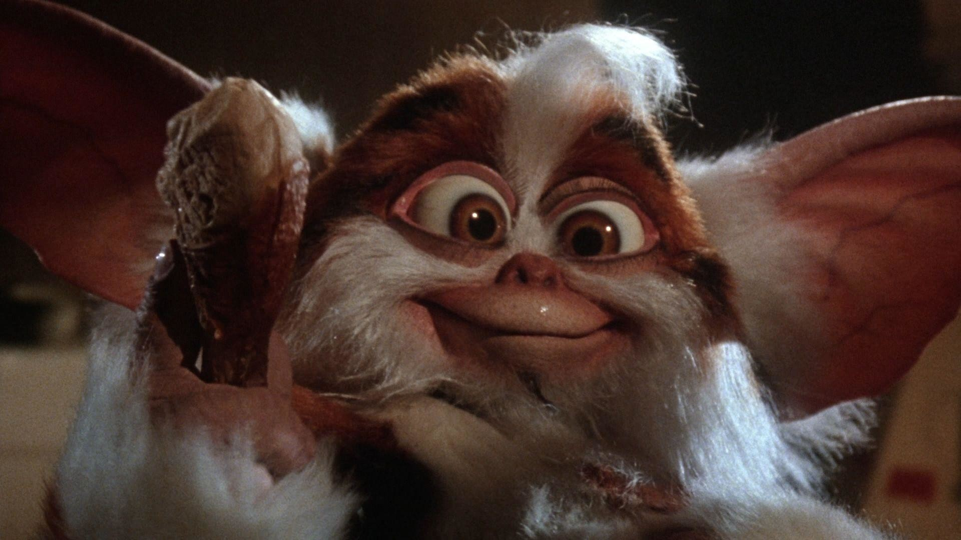 Res: 1920x1080, Images For > Gremlins Gizmo Rambo