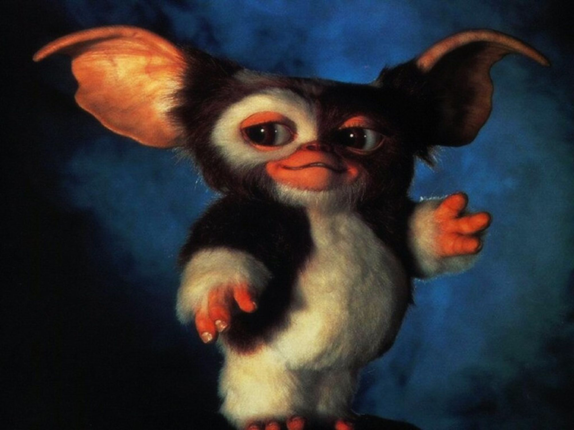 Res: 2000x1500,  Gizmo Gremlins Wallpapers Wallpaper Cave Nice Gizmo From Gremlins  Wallpaper These are High Quality and