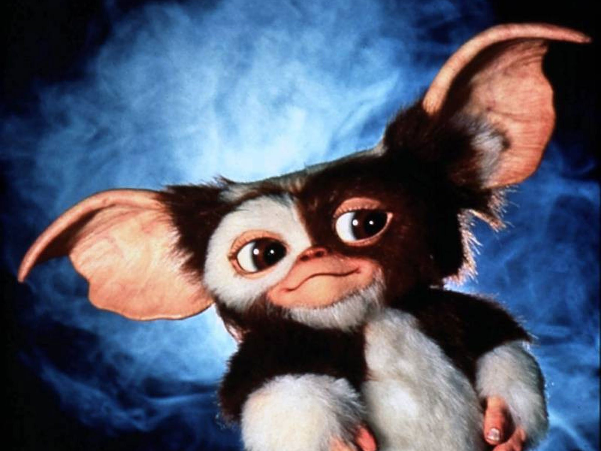 Res: 2048x1536, Wallpapers for Gremlins - Resolution 1920x1080 | Large Background Pictures .