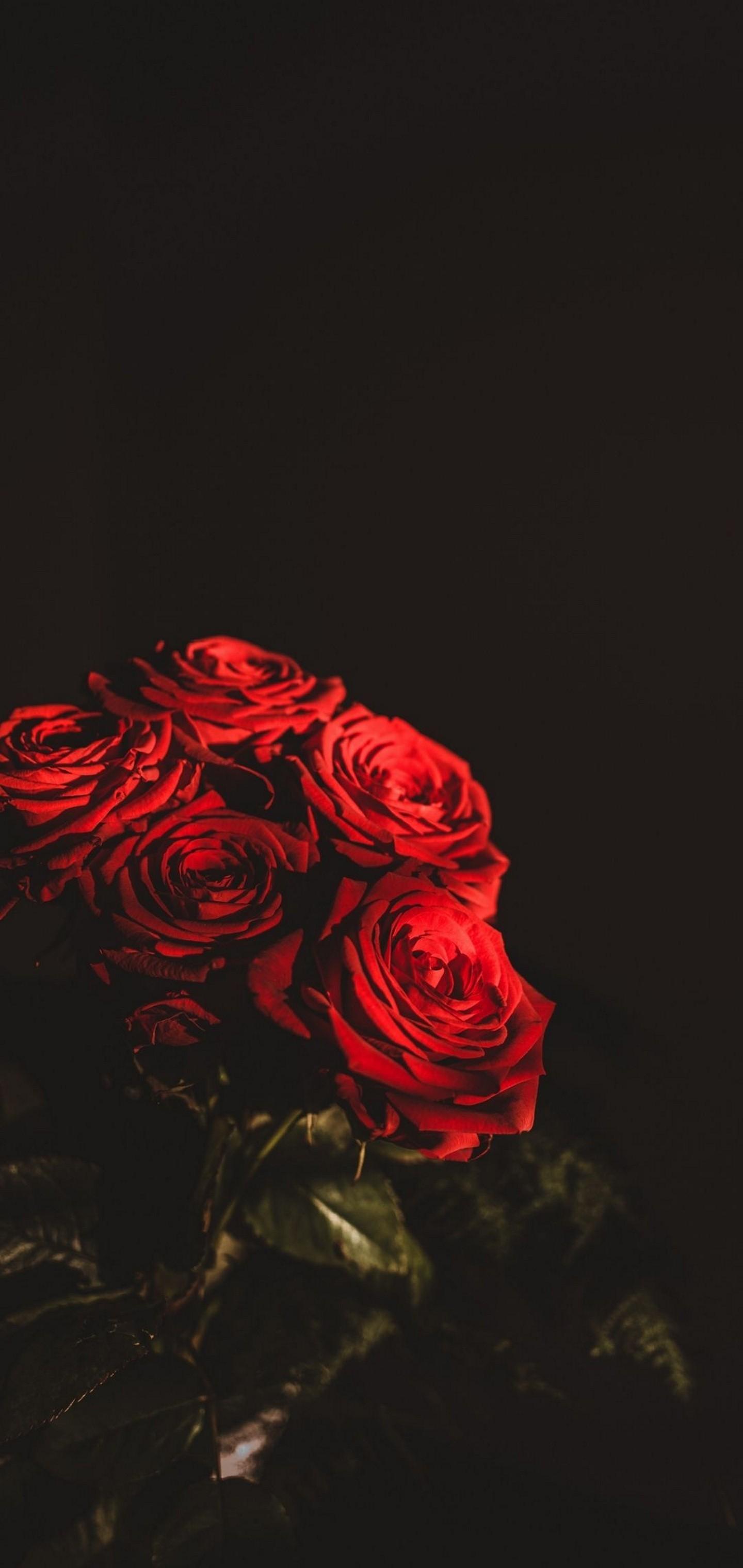 Res: 1440x3040, Dark Red Flowers Bouquet Wallpaper  768x1621