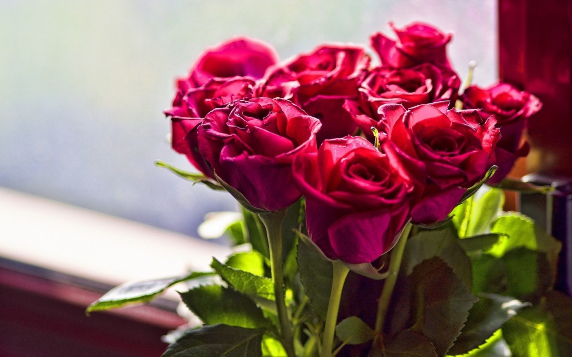 Res: 1920x1200, A Bunch Of Red Roses | HD Flowers Wallpaper Free Download ...