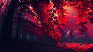 Red Nature wallpapers