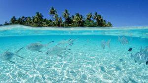 Ocean Desktop wallpapers