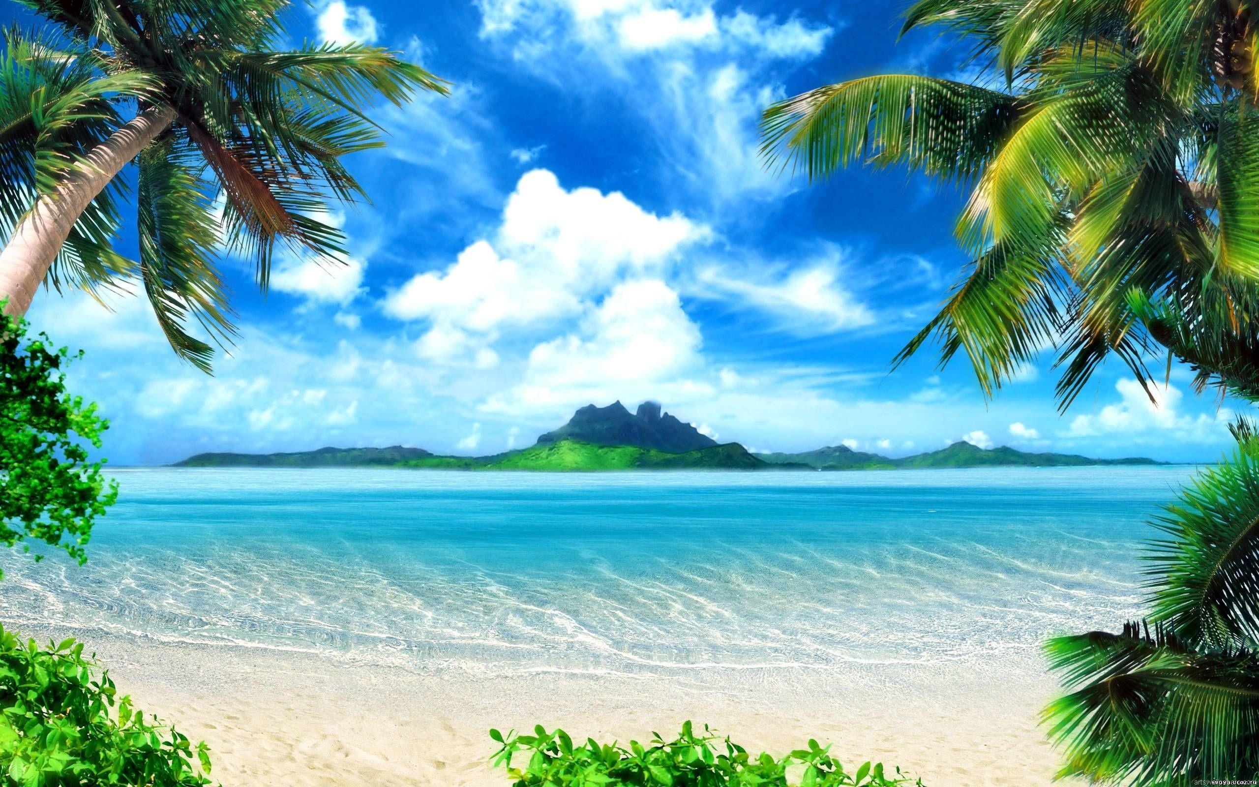 Res: 2560x1600, flowers on the beach   Sea Ocean Wallpaper, HD, Full HD 1080p, Desktop  Wallpaper, Background .