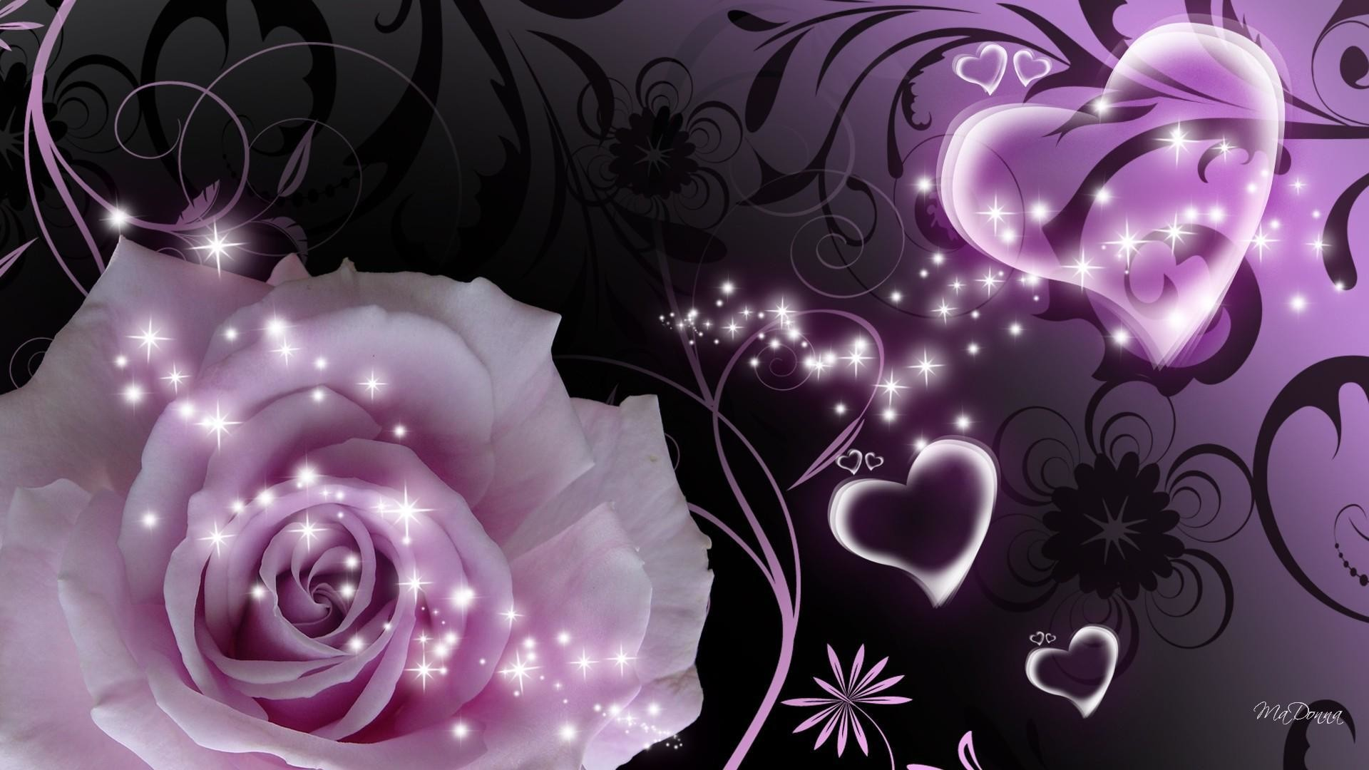 Res: 1920x1080,  Purple rose and heart a beautiful picture