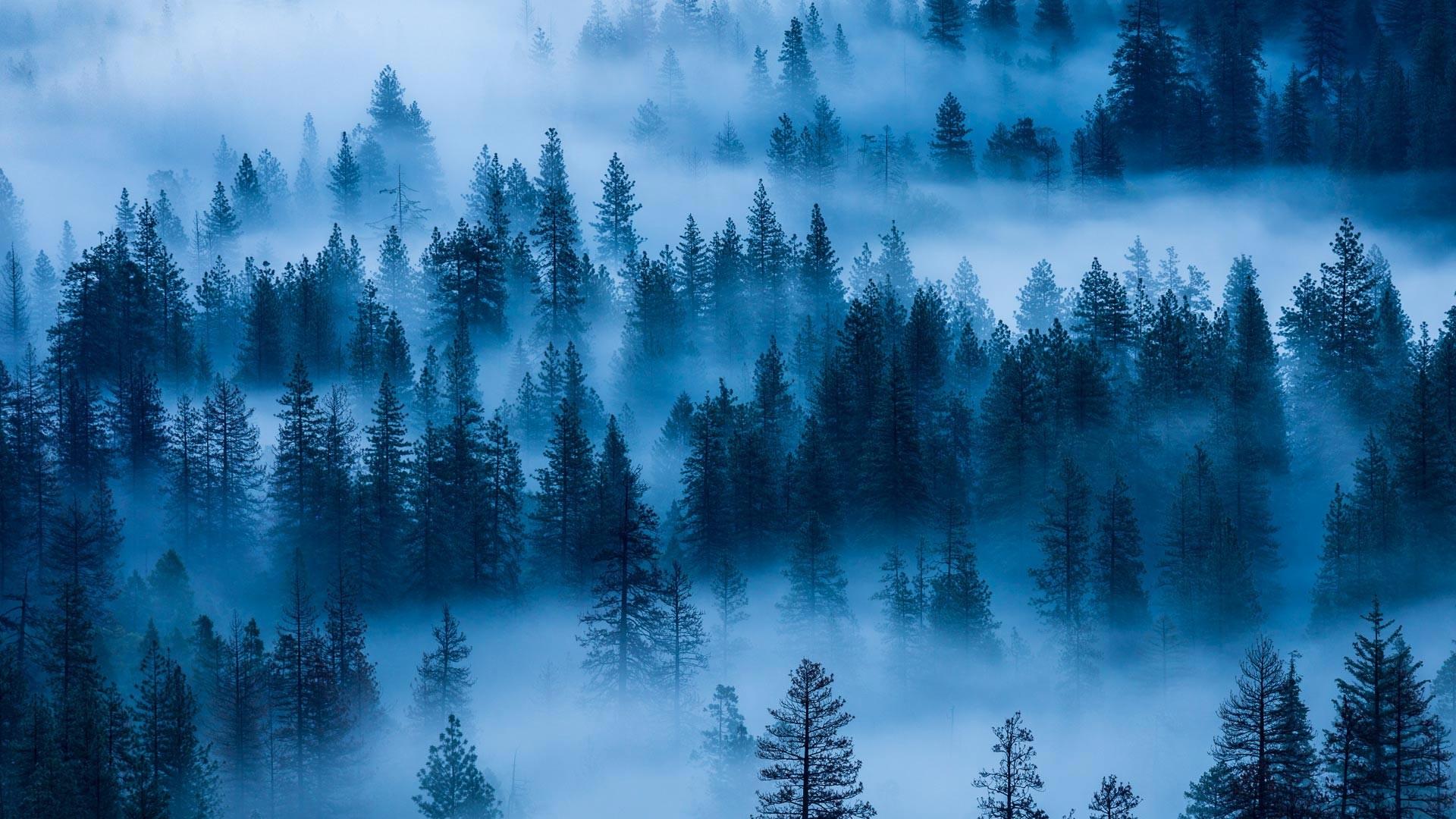 Res: 1920x1080, [] Yosemite Fog (Bing wallpaper) ...