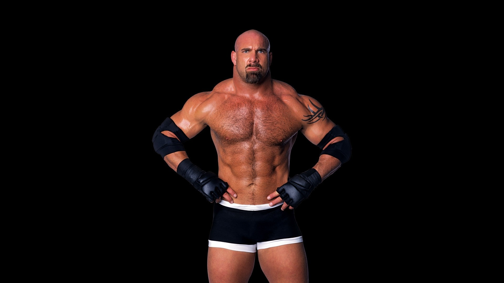 Res: 1920x1080, 1920x1200 wwe Download WWE Wallpapers HD Pictures Backgrounds Hd