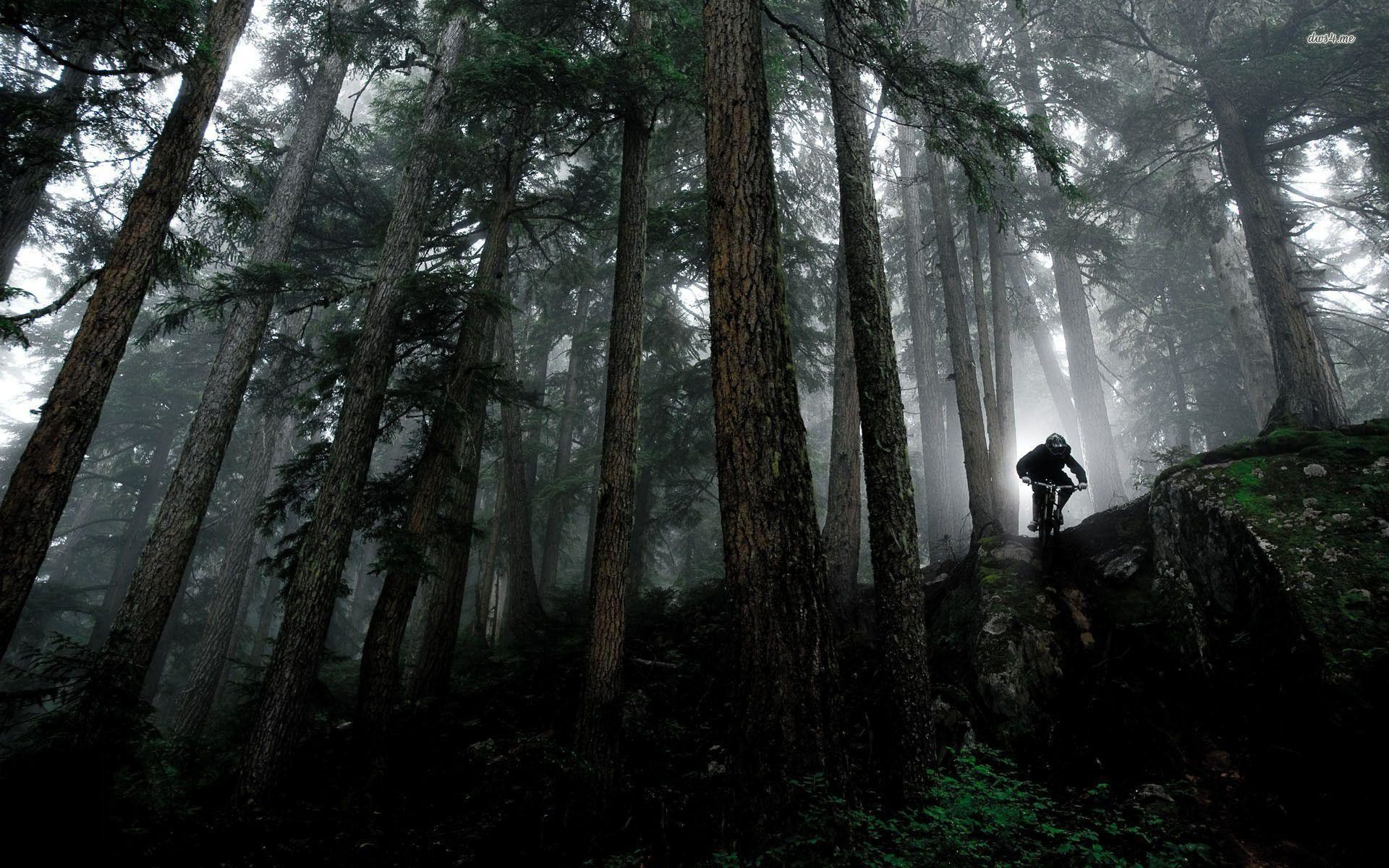 Res: 1920x1200,  Mountain Bike Wallpapers