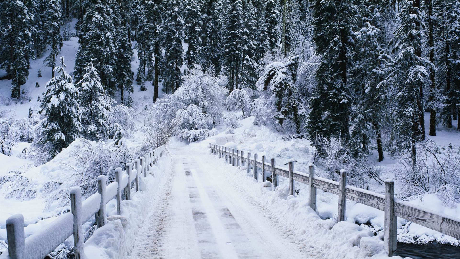 Res: 1920x1080, Snowy Wallpaper HD 46756