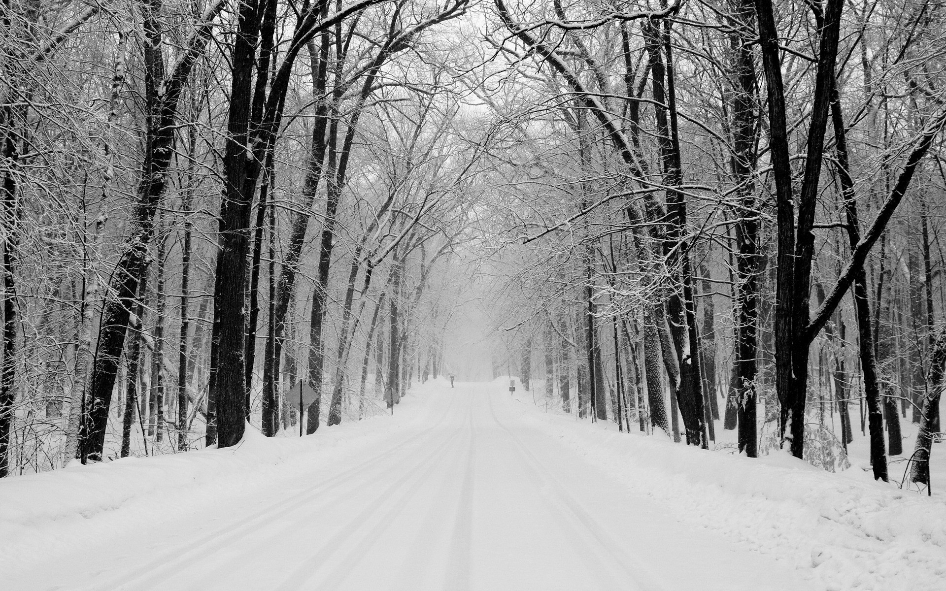 Res: 1920x1200, Snowy Road Wallpaper Winter Nature Wallpapers