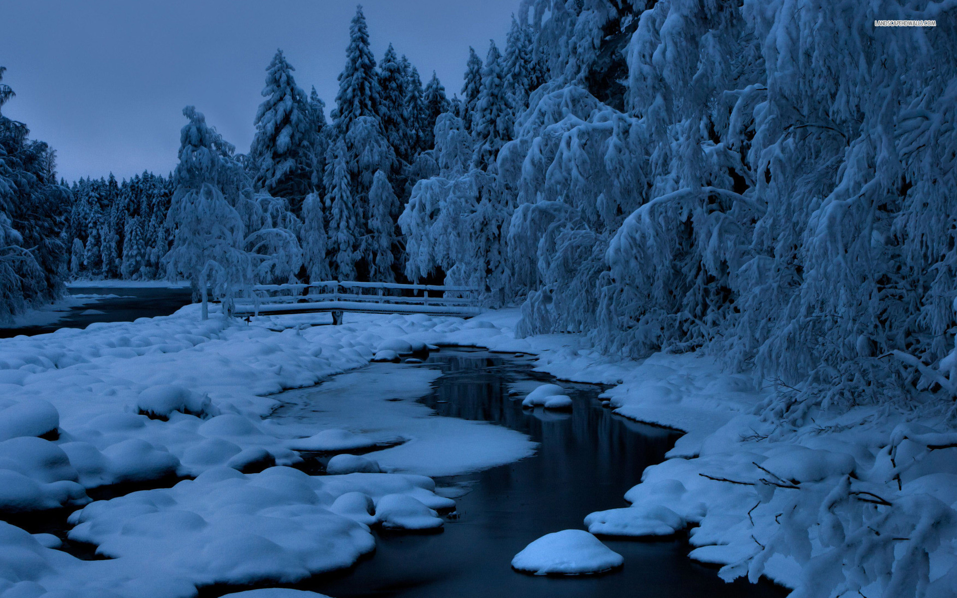 Res: 1920x1200, Image: Blue Winter Trees Creek Snowy wallpapers and stock photos. Â«