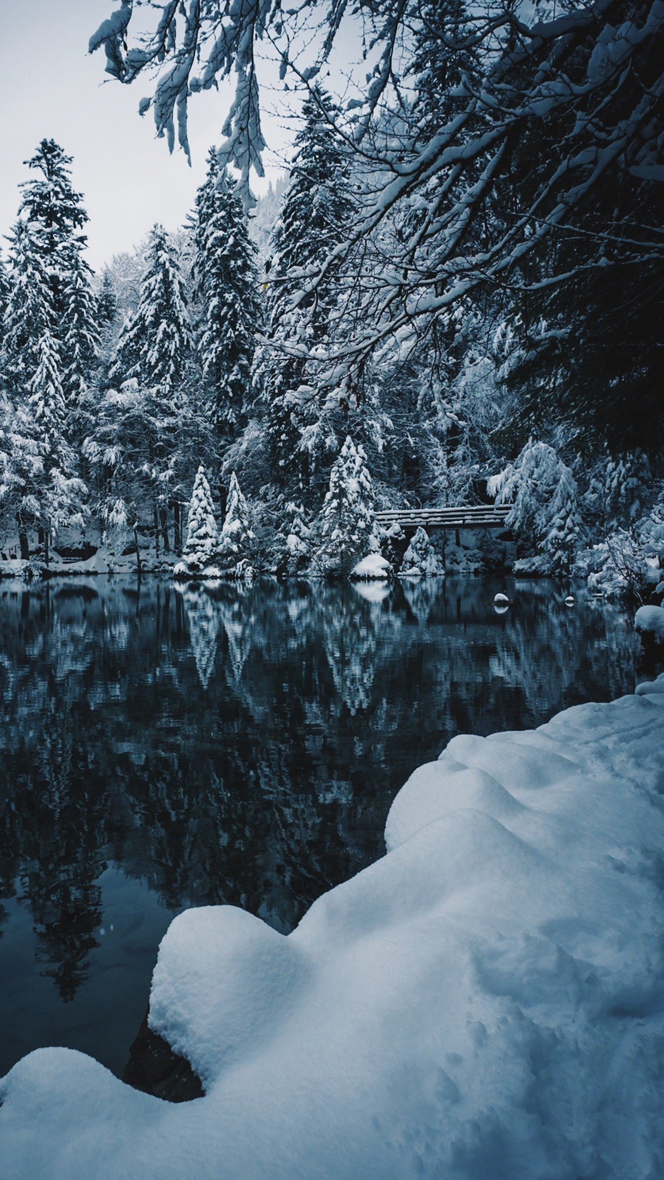Res: 1350x2400,  Wallpaper lake, snow, branches, winter, snowy
