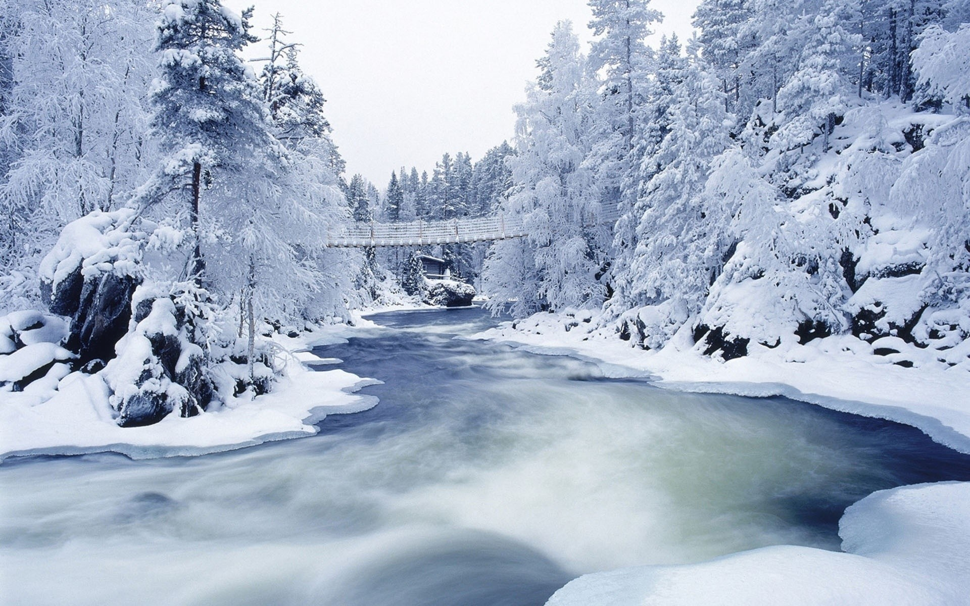 Res: 1920x1200, Snowy Christmas HD Wallpapers For Pc