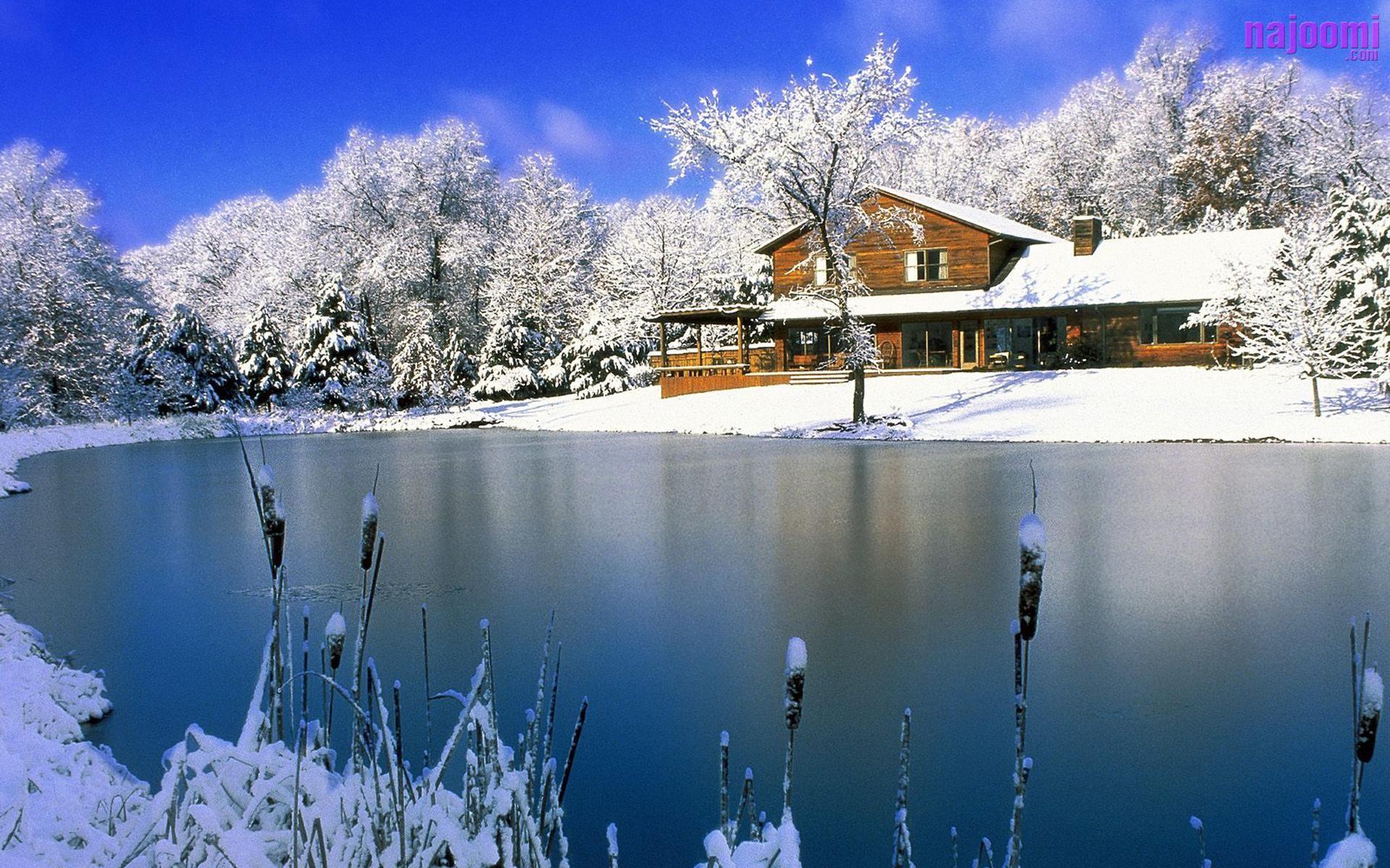 Res: 1920x1200, Pretty Snowy Wallpaper