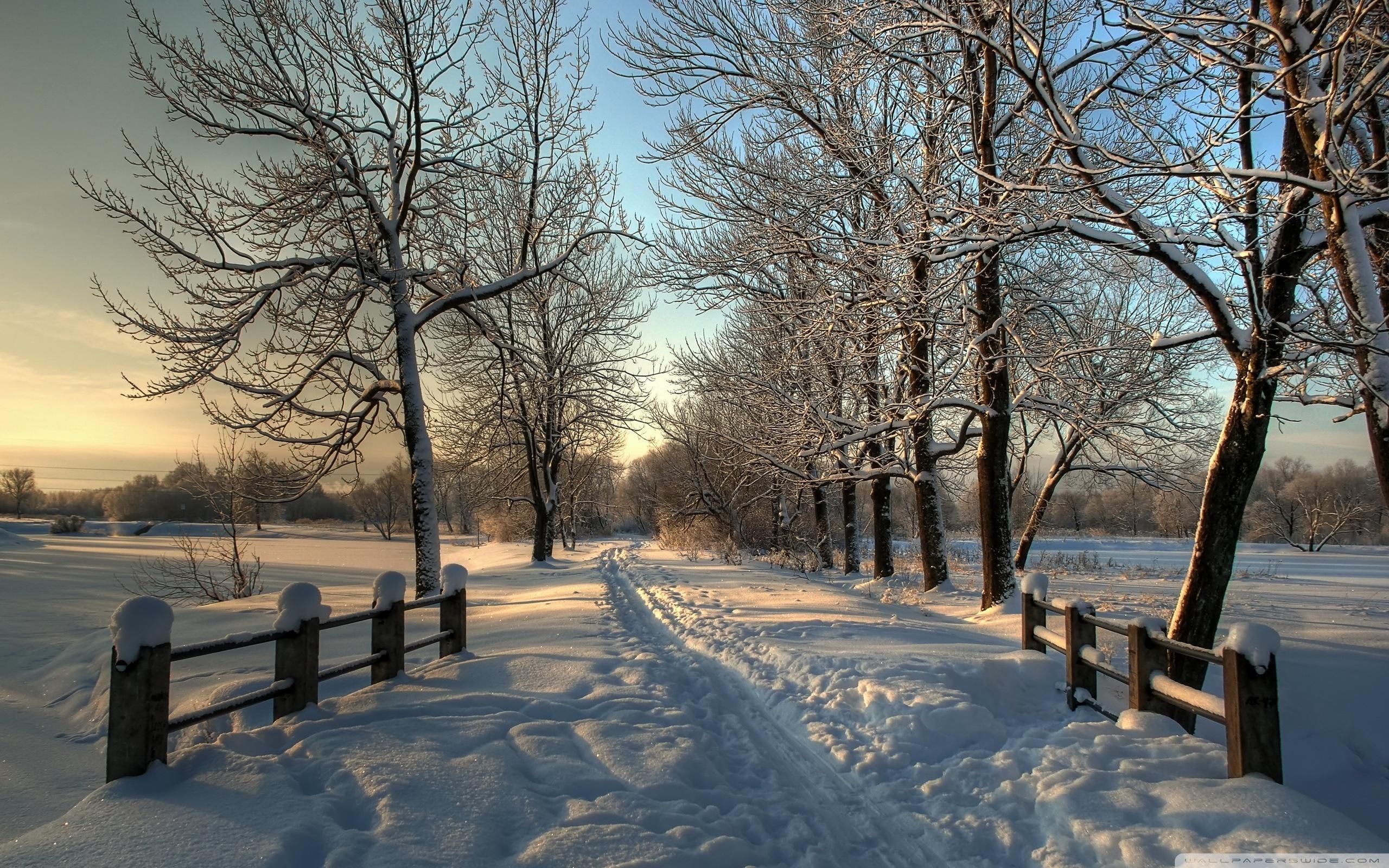 Res: 2560x1600, snowy wallpaper #468023