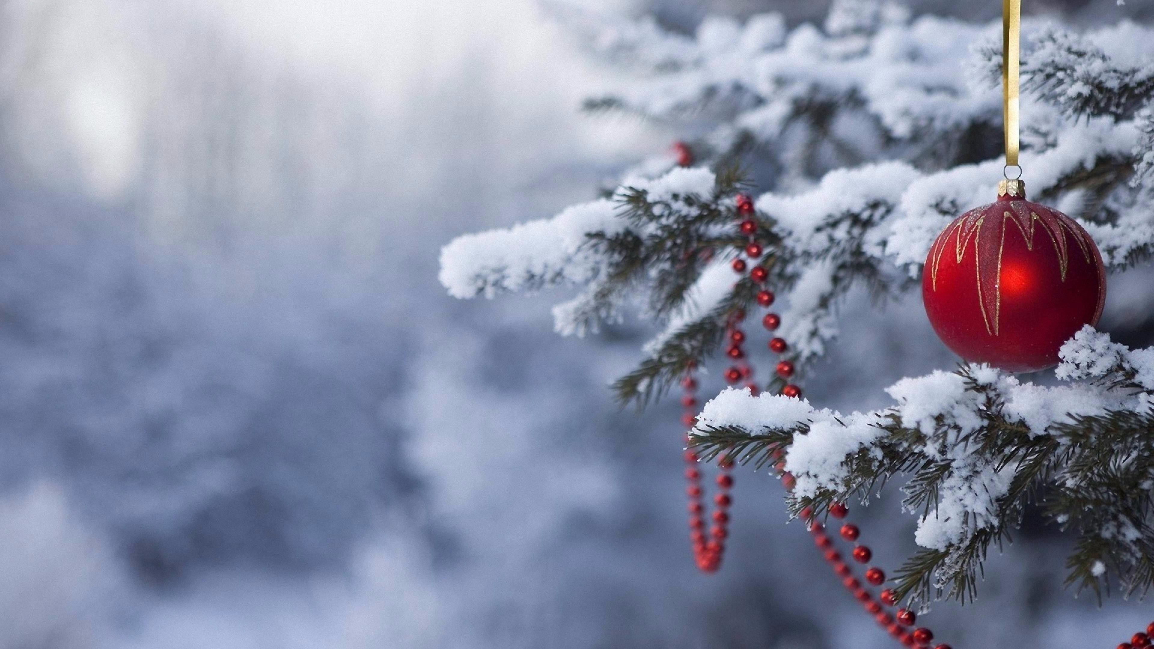 Res: 3840x2160, 68 Snowy Christmas Wallpapers On WallpaperPlay Tree Wallpaper