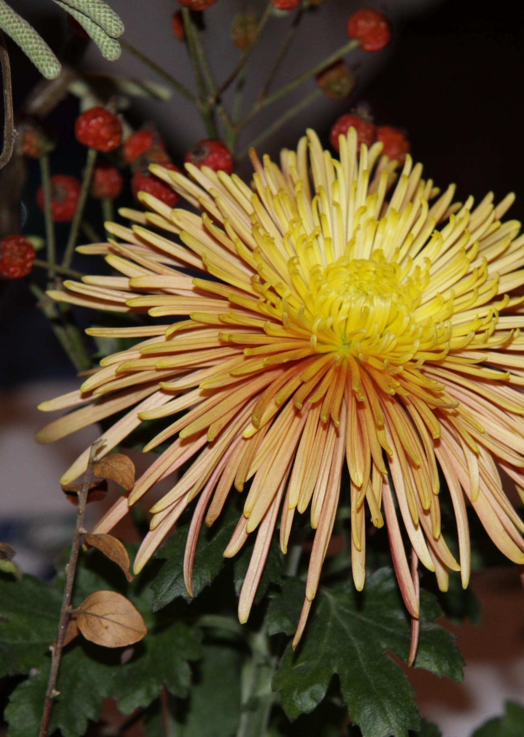 Res: 1700x2389, Ikebana, Japanese Flower Arrangement