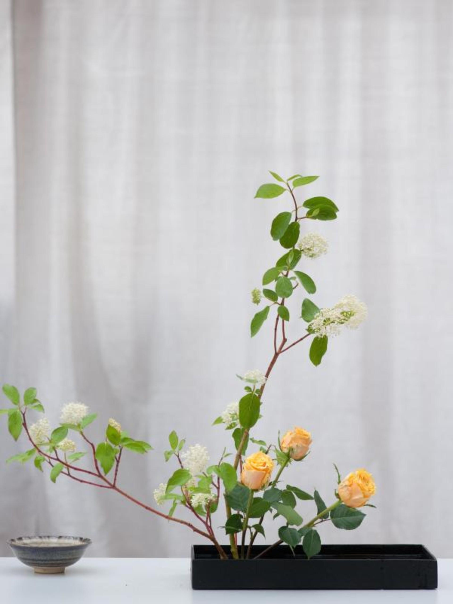 Res: 1920x2560, Freizeit - Die Kunst des Ikebana - Ideen der japanischen Floristik – HAZ –  Hannoversche Allgemeine