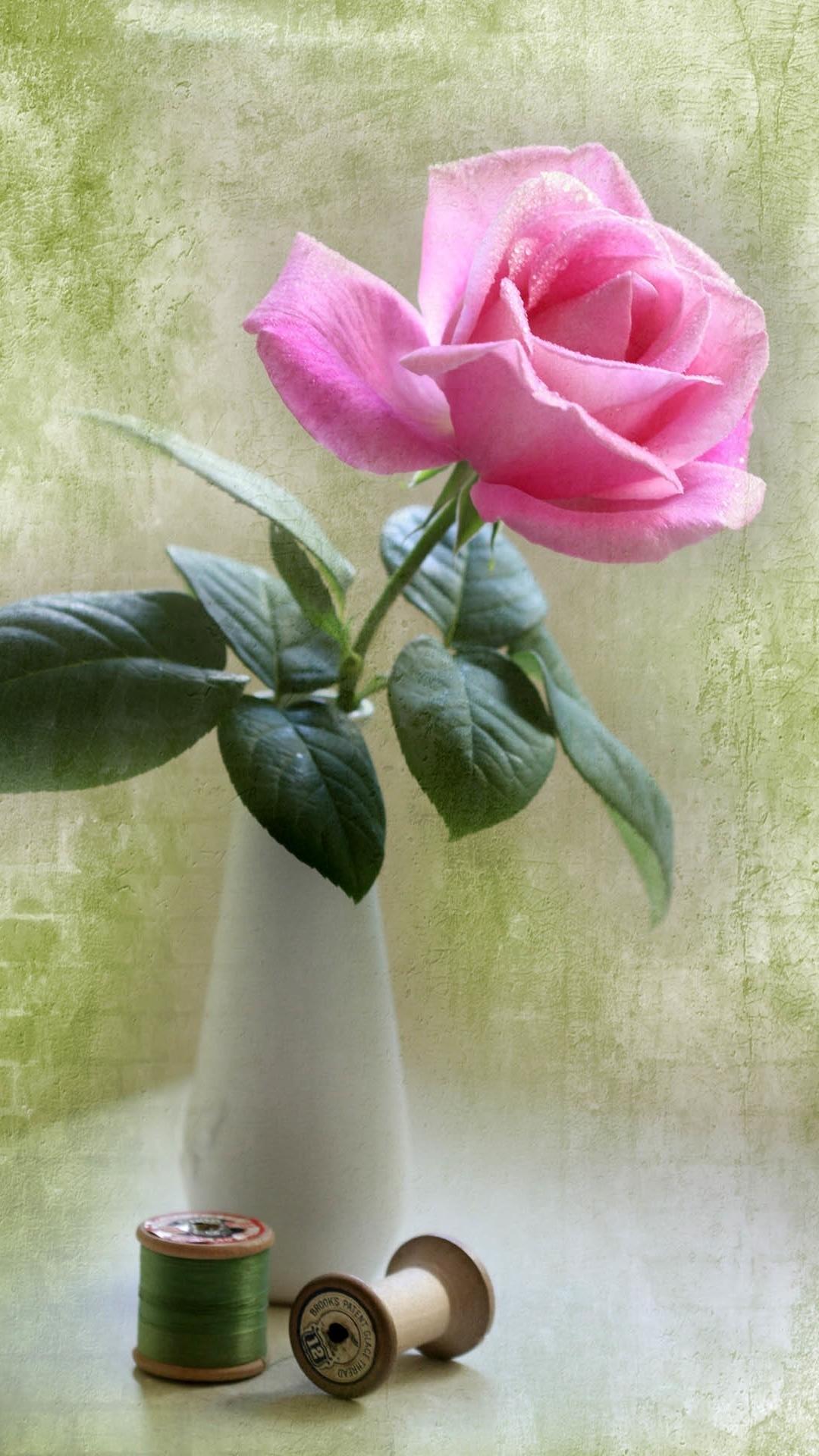 Res: 1080x1920, Elegante rosa Rose Vase Ikebana-Kunst iPhone 8 Plus Wallpaper