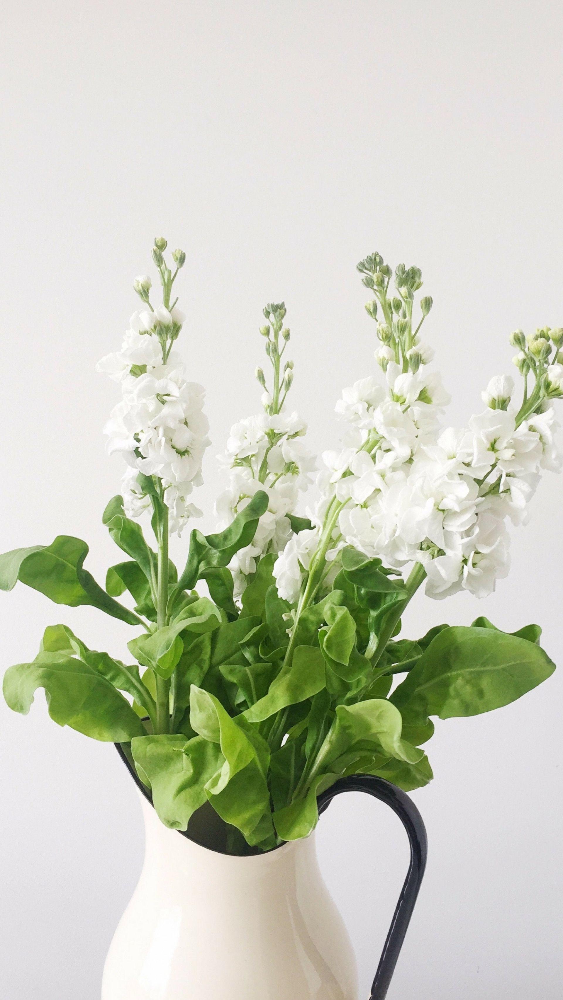 Res: 1920x3413, Flower Wallpaper 279