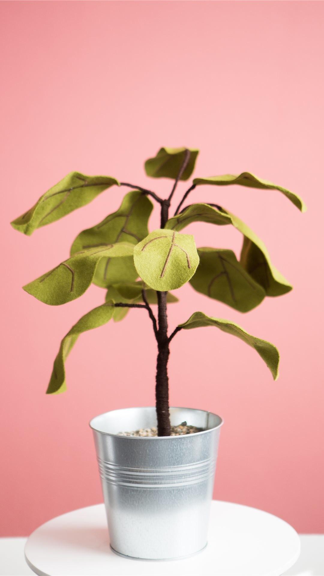 Res: 1080x1920, ... Ficus plant from Felt iPhone X wallpaper.