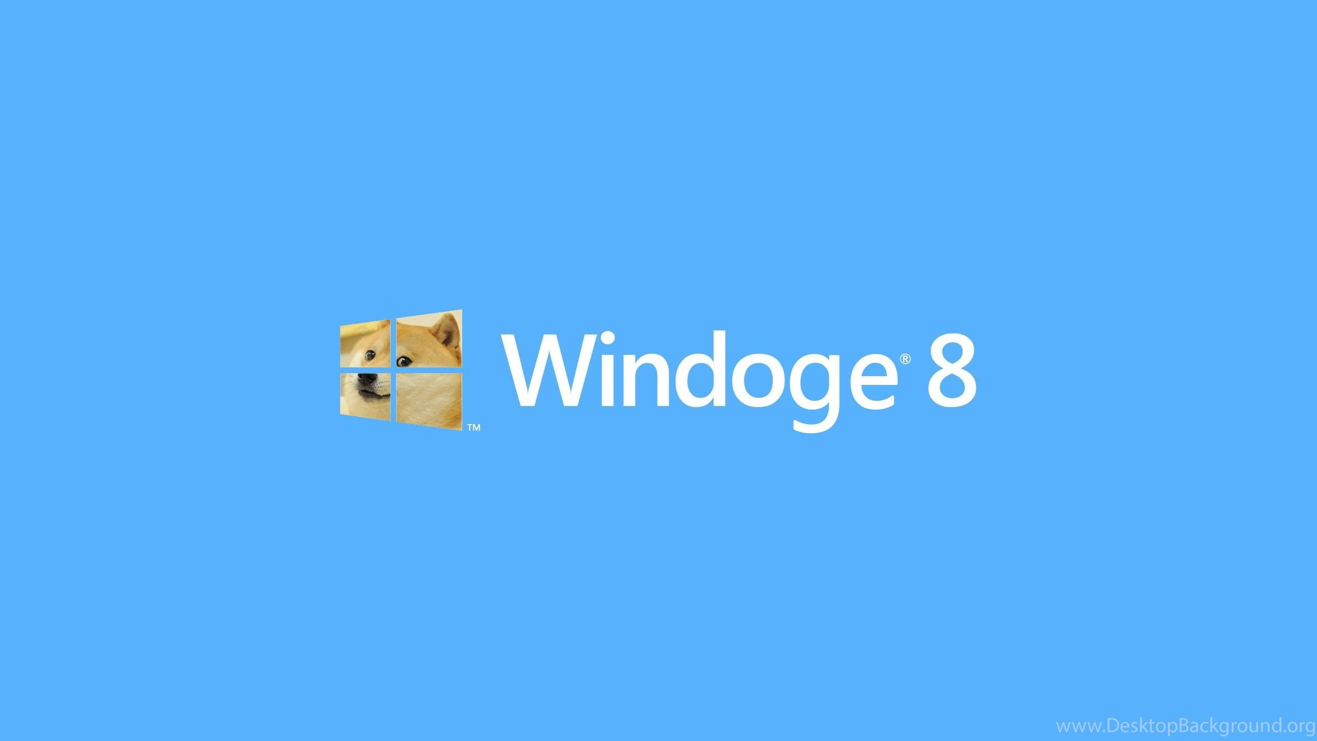 Res: 2560x1440, Cute Doge Simple Windows 8 Wallpapers HD 9