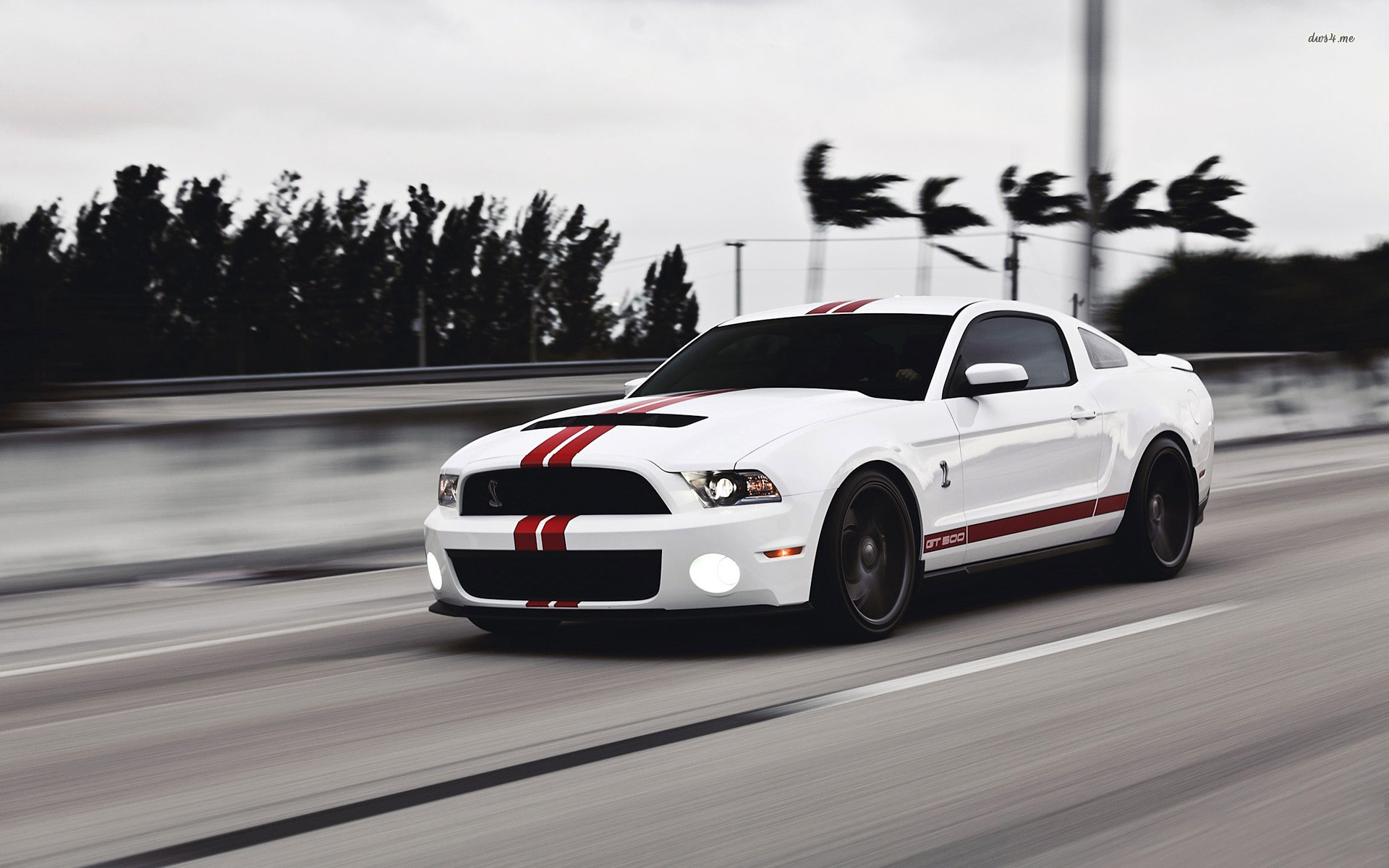 Res: 1920x1200, ... Ford Shelby Mustang GT500 wallpaper  ...