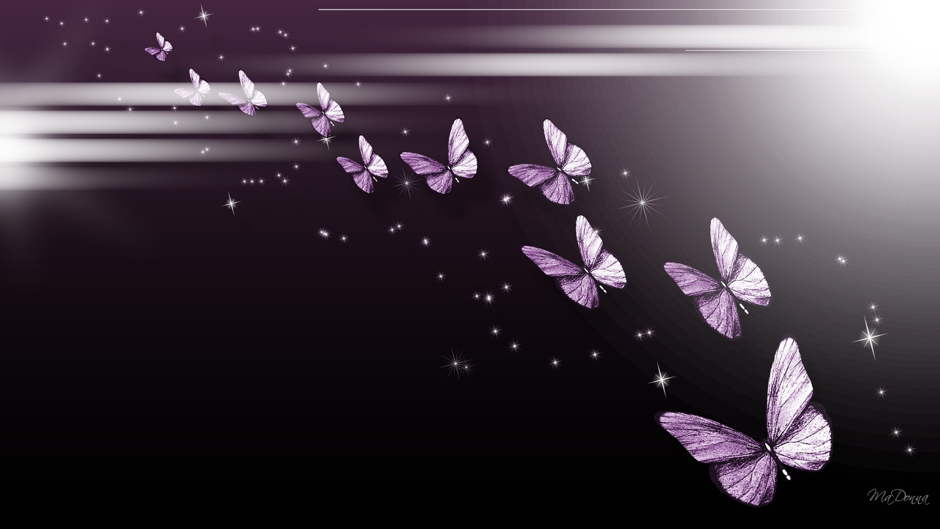 Res: 1920x1080, Purple Butterfly Wallpapers Hd