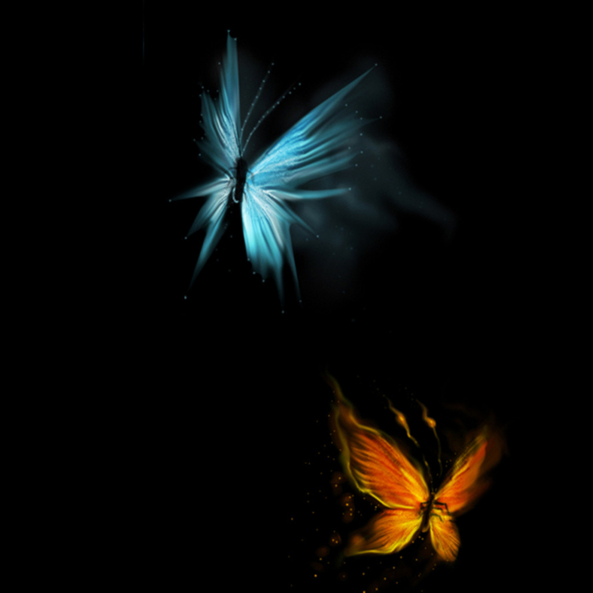 Res: 2048x2048,  Free Butterfly Art Download Free Clip Art Free Clip Art on  Clipart Wallpapers, #