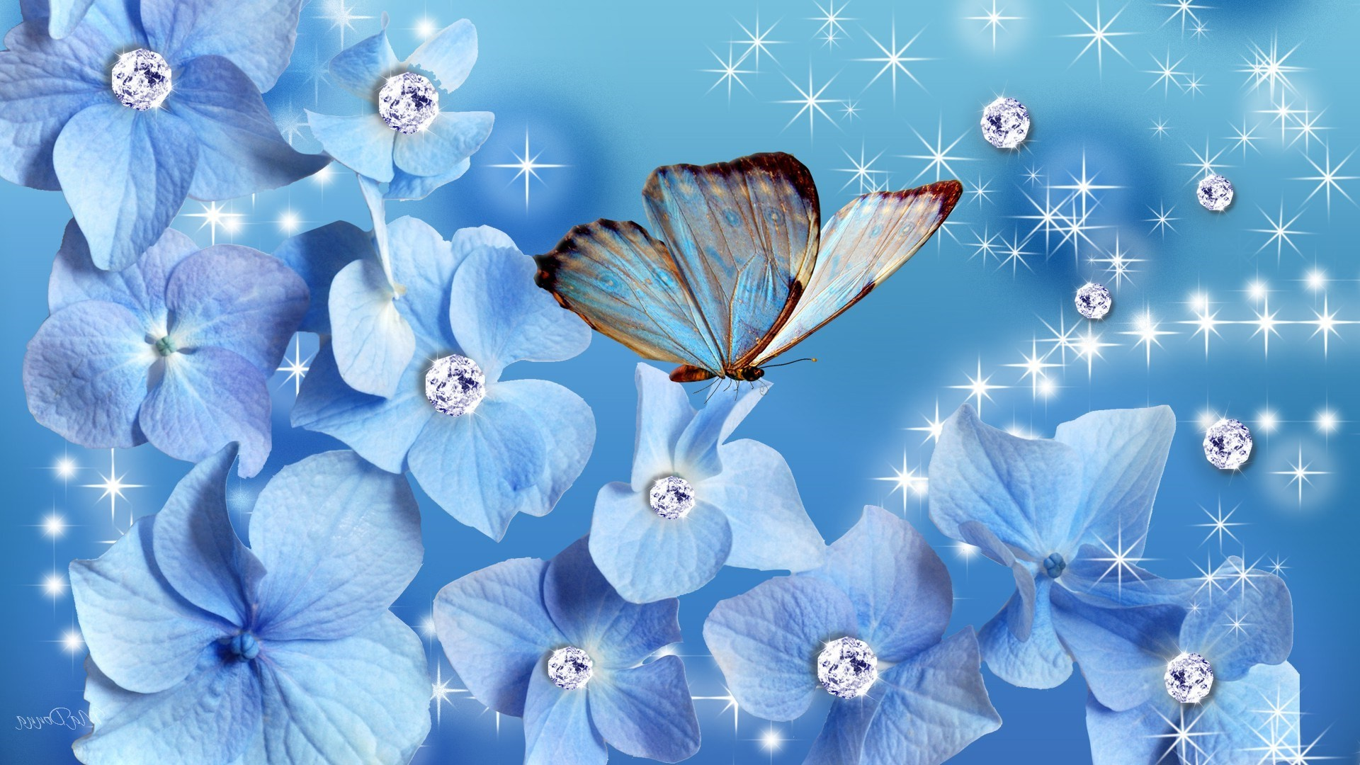 Res: 1920x1080, 3d abstract butterfly wallpapers blue