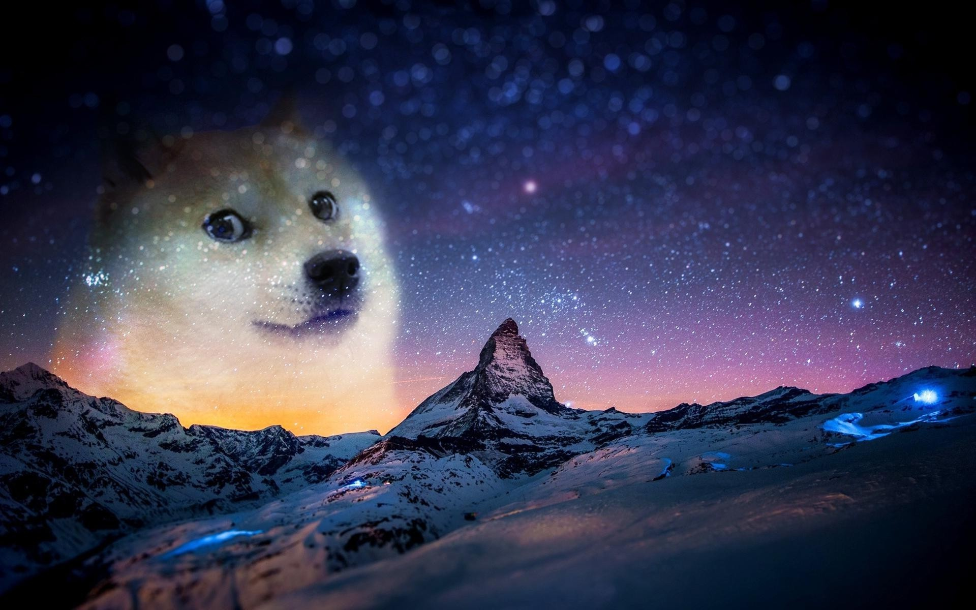 Res: 1920x1200, Doge Wallpaper High Quality