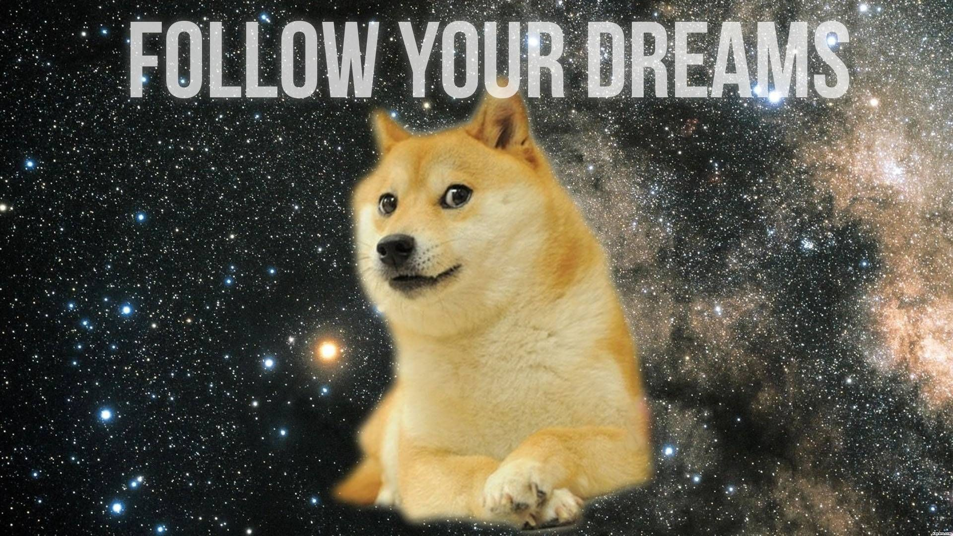 Res: 1920x1080, Wow Such Wallpaper - Doge Wallpaper (1600x900) (18371)