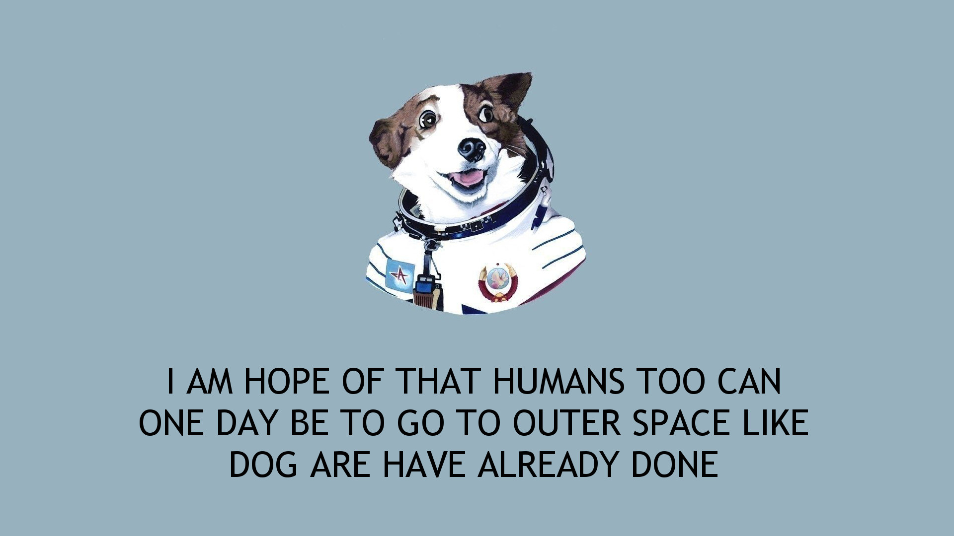 Res: 1920x1080, Strelka The Space Dog (i.imgur.com)