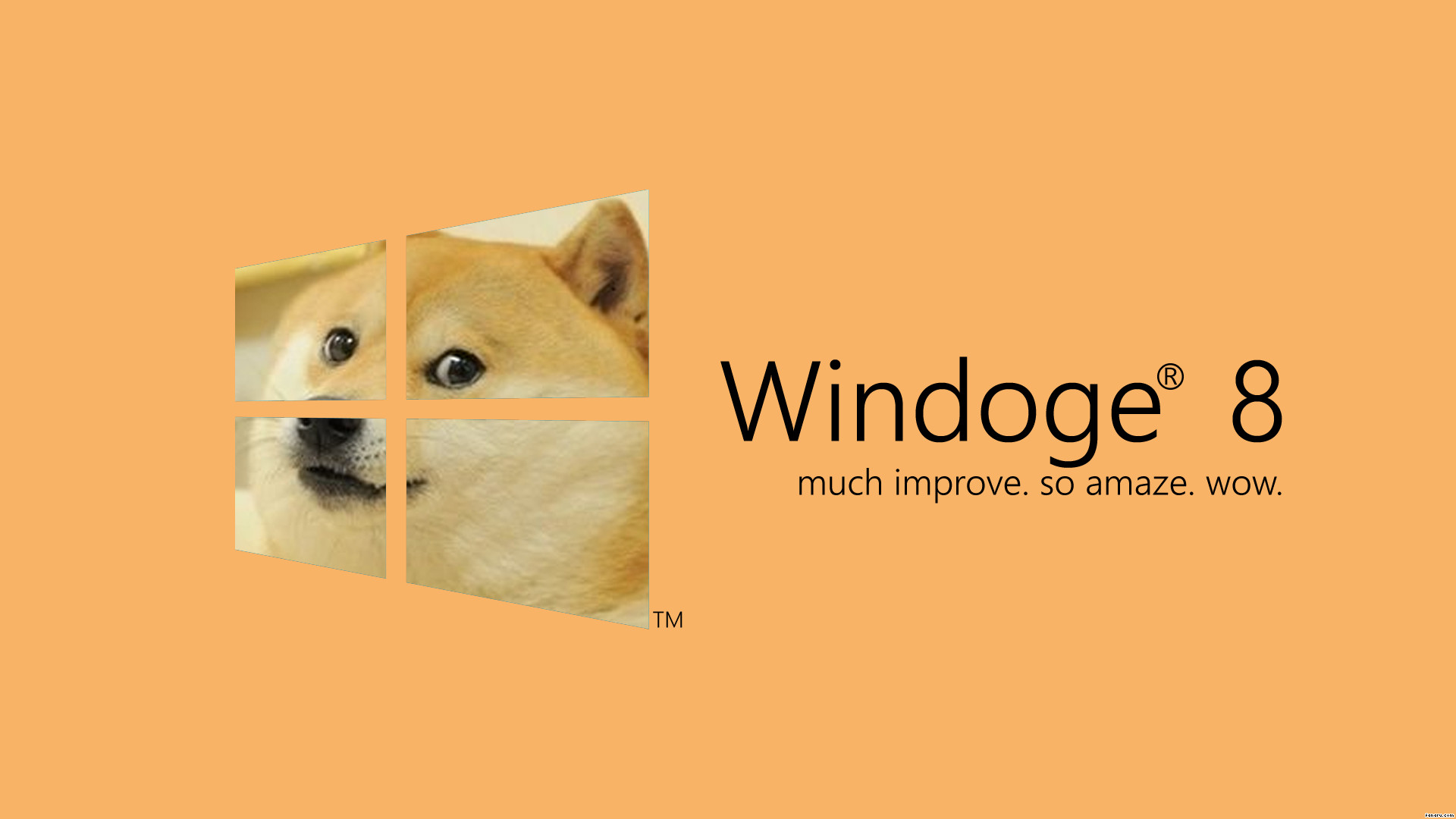 Res: 1920x1080, Doge Original Wallpaper Full Hd Pics Widescreen In