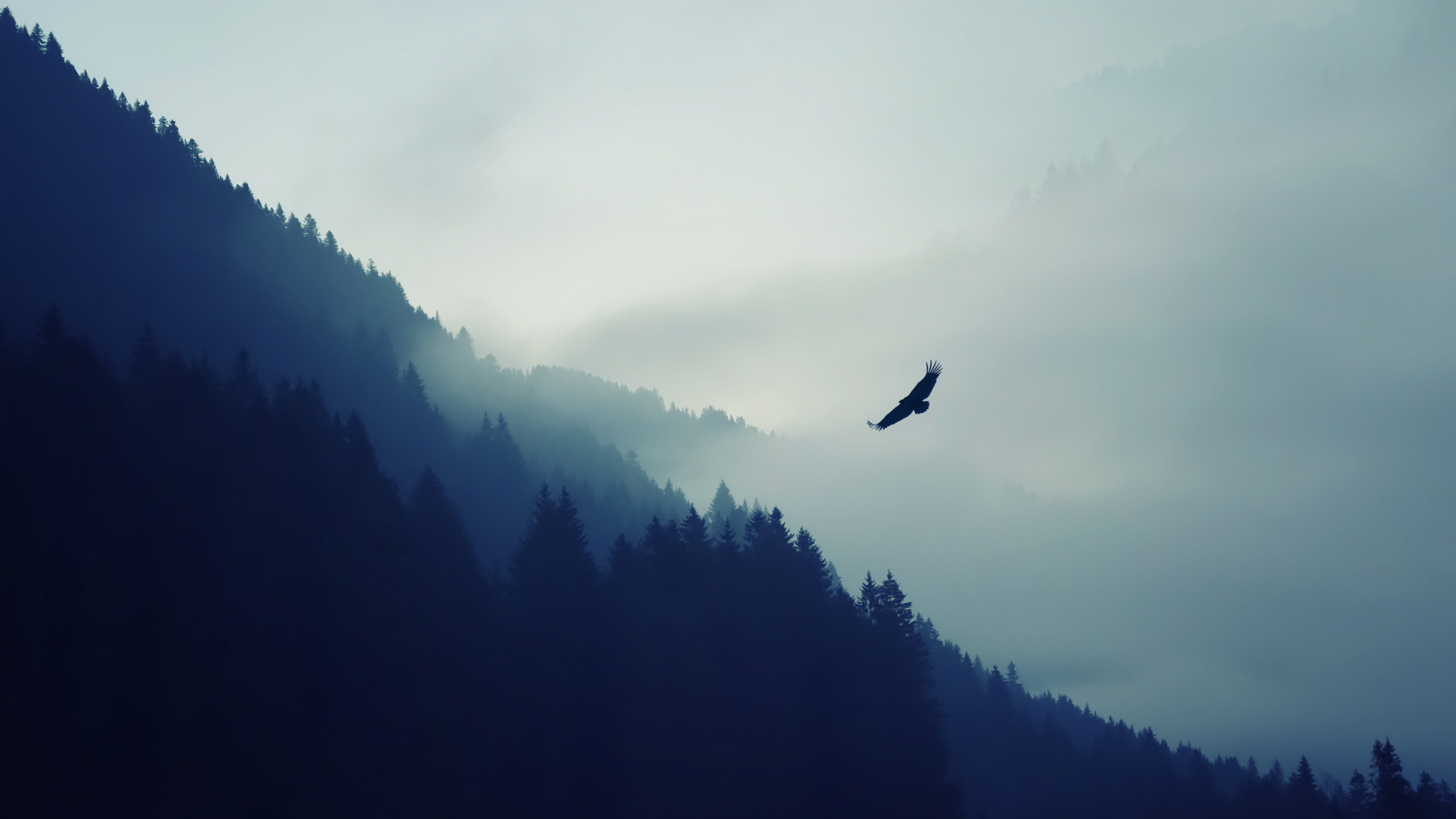 Res: 3840x2160,  nature mountain eagle fog landscape ultrahd 4k wallpaper wallpaper