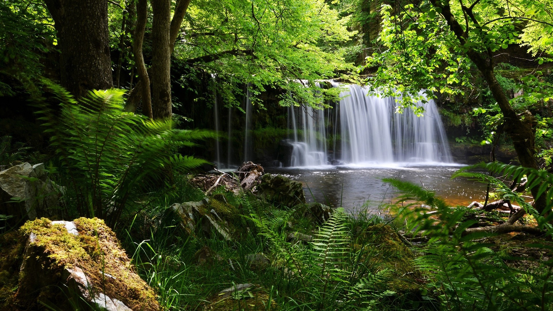 Res: 1920x1080, waterfall, grass, nature