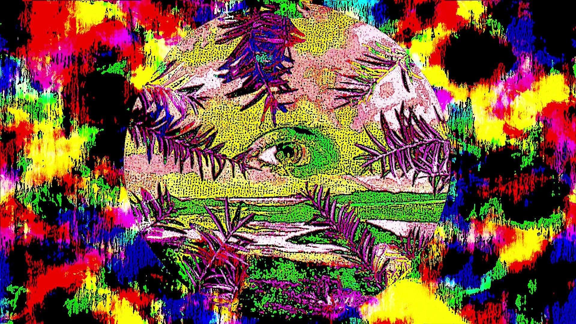 Res: 1920x1080, 2560x1440  Trippy Shroom Wallpapers HD Wallpaper Background Ã'·  Wallpapers, Background, Wallpaper, Tripy, Fractal, Trippy .