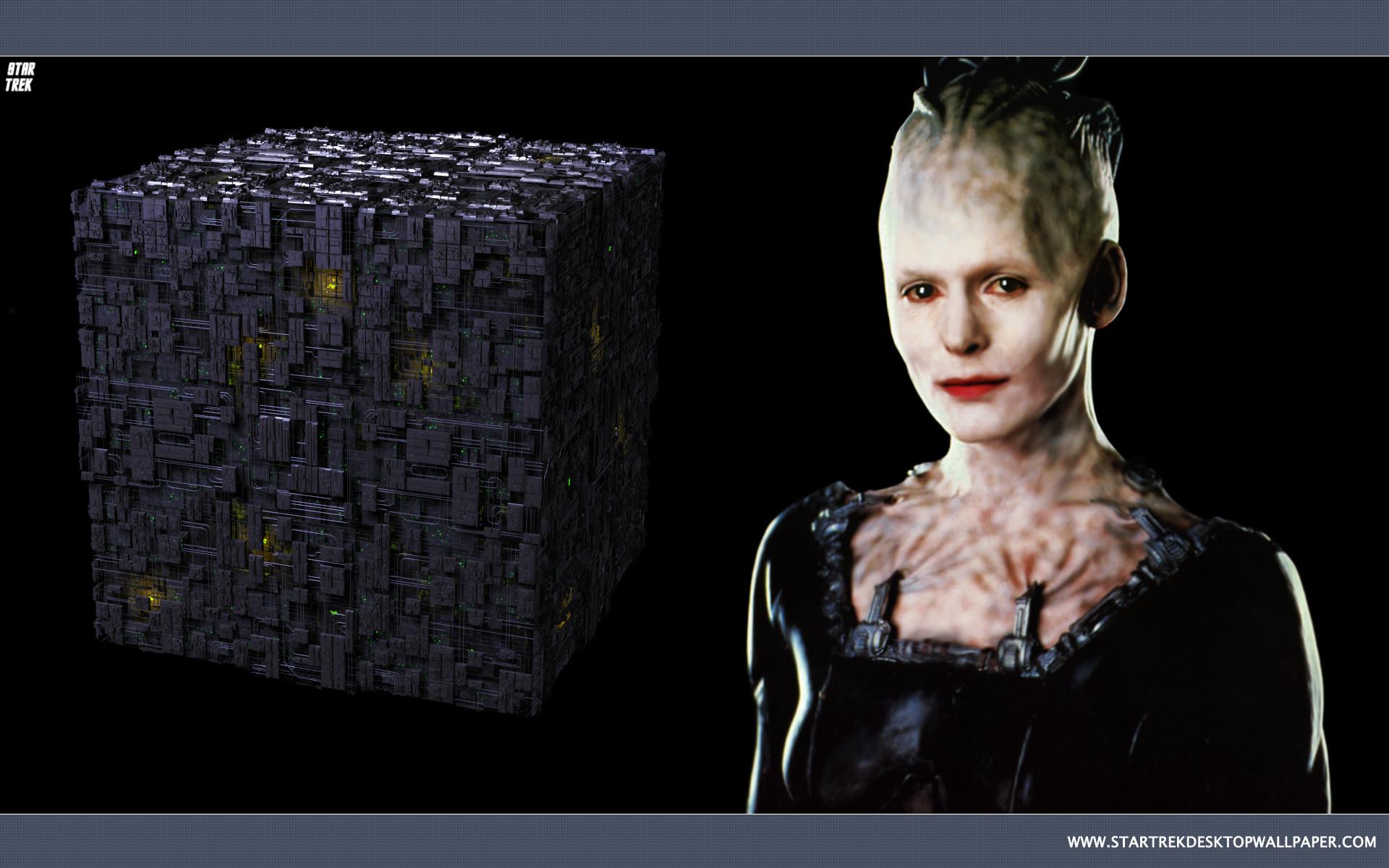 Res: 1920x1200, Star Trek Borg Queen - free Star Trek computer desktop wallpaper, pictures,  images